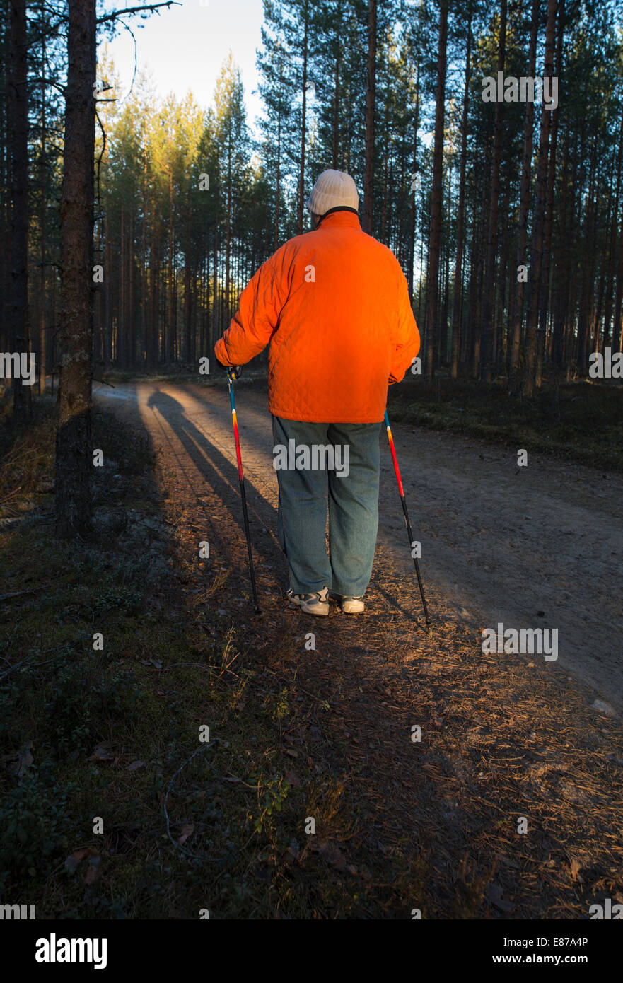 Elderly senior woman standing in the forest with Nordic walking poles , Finland Stock Photo