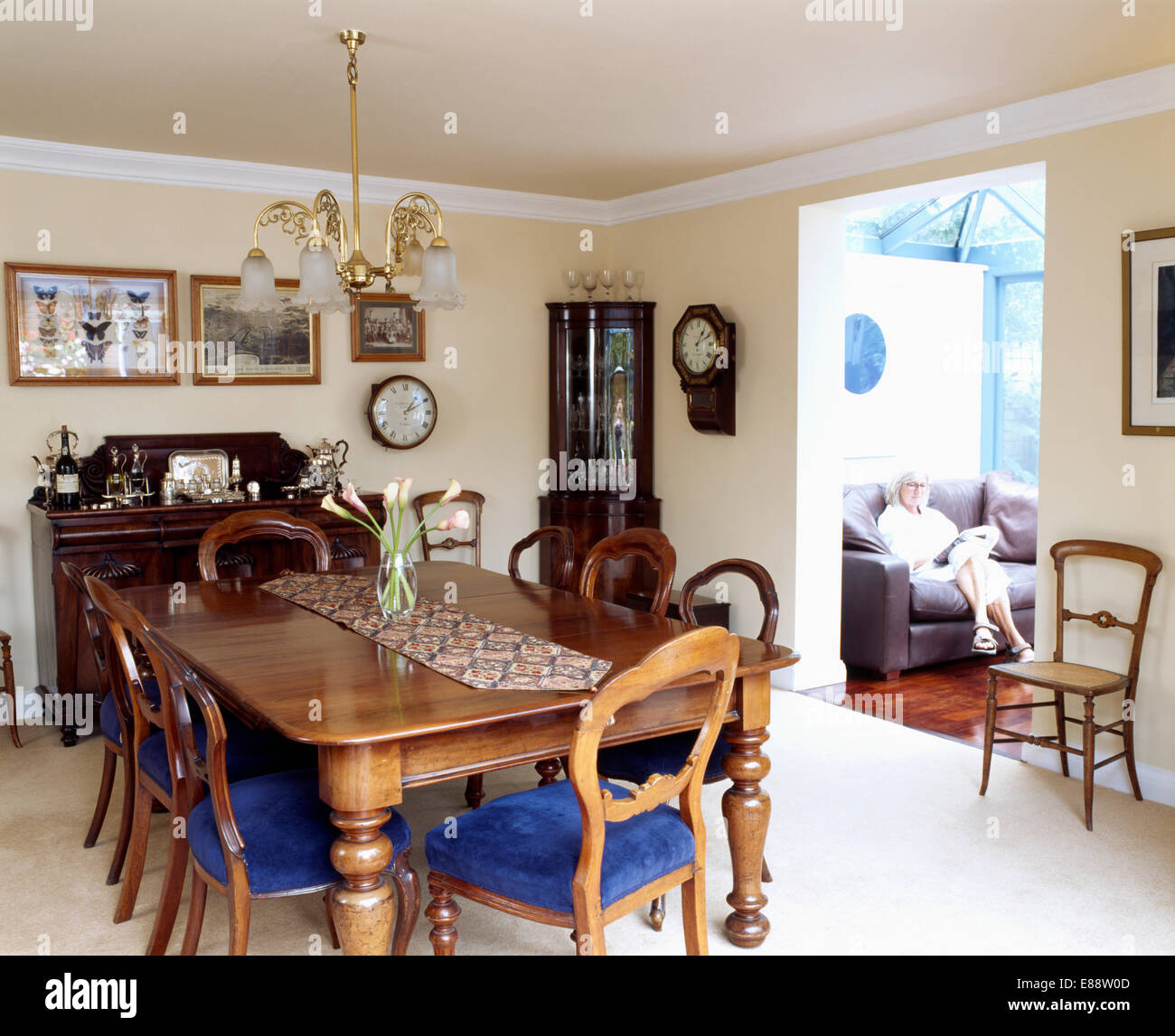 Victorian Balloon Back Chairs And Mahogany Table In Dining Room With White  Carpet And Doorway To Living Room Extension