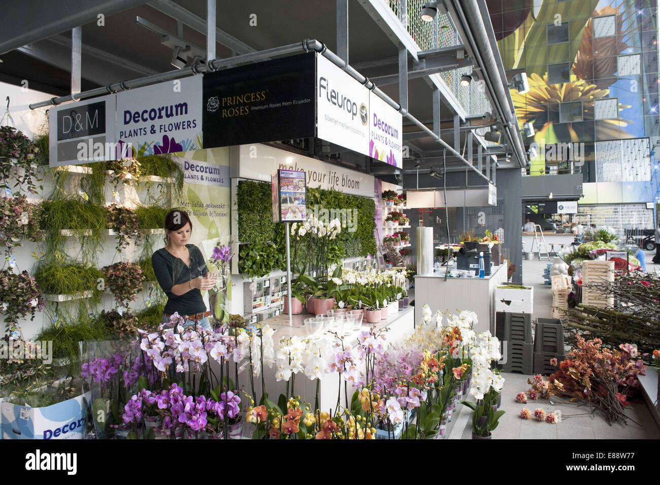 Sept. 30, 2014 - Rotterdam, South Holland, The Netherlands, Holland - An employee of a flower shop makes a bouquet Stock Photo