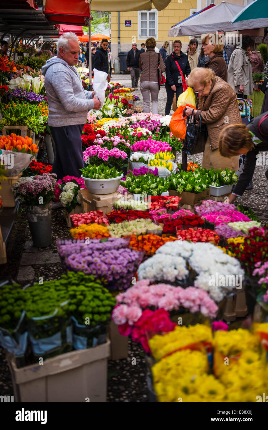 Flower stall owner in Ljubljana Central Market on a Saturday in Vodnikov Trg, Ljubljana, Slovenia, Europe - Stock Image