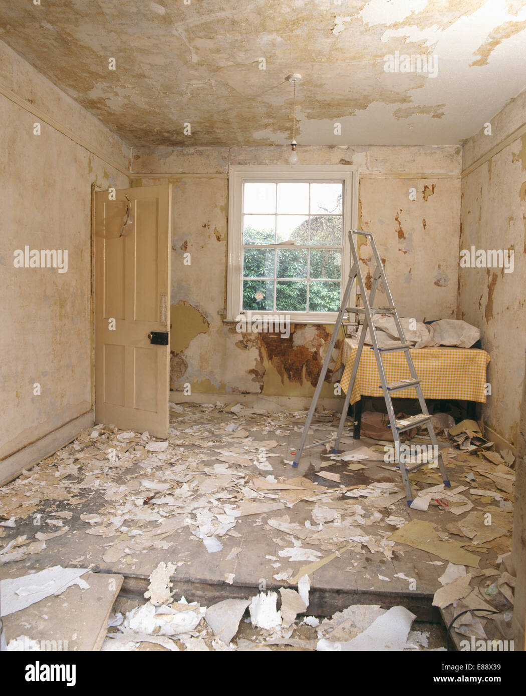 Stepladder in empty room in the middle of renovation, old wallpaper on floor Stock Photo