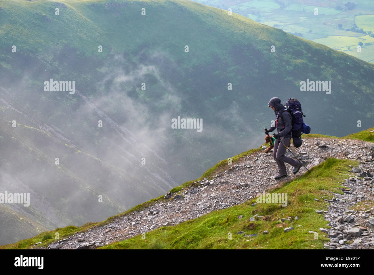 A hiker walking down Scales Fell from the summit of Blencathra in the Lake District, Cumbria, England.UK. - Stock Image