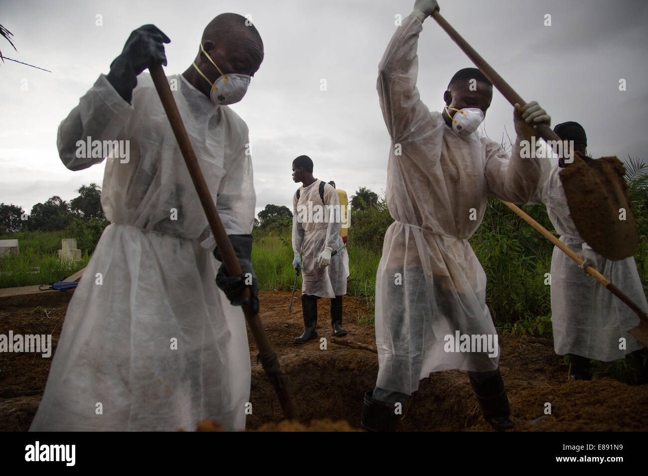 Body removal team buries an Ebola victim in Unification Town, Liberia 2014-08-30 11:39:48.043 - Stock Image