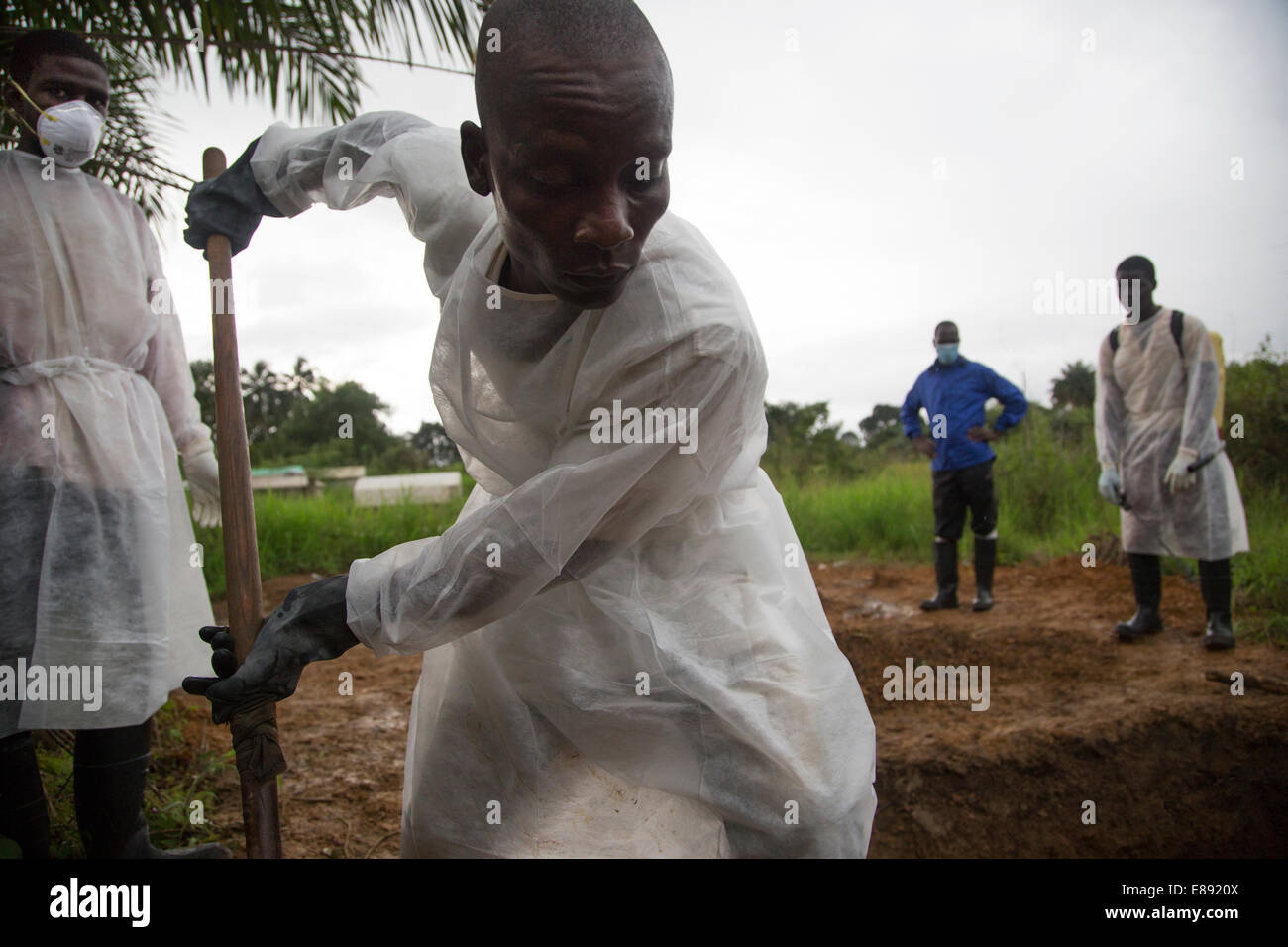 Member of the burial team shovels in a recently filled grave in Unification Town, Liberia. - Stock Image