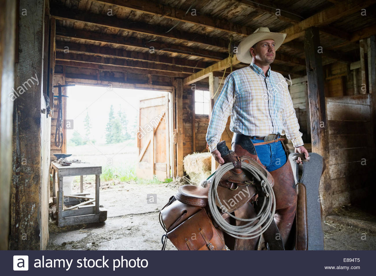 Rancher carrying saddle and tack in barn - Stock Image