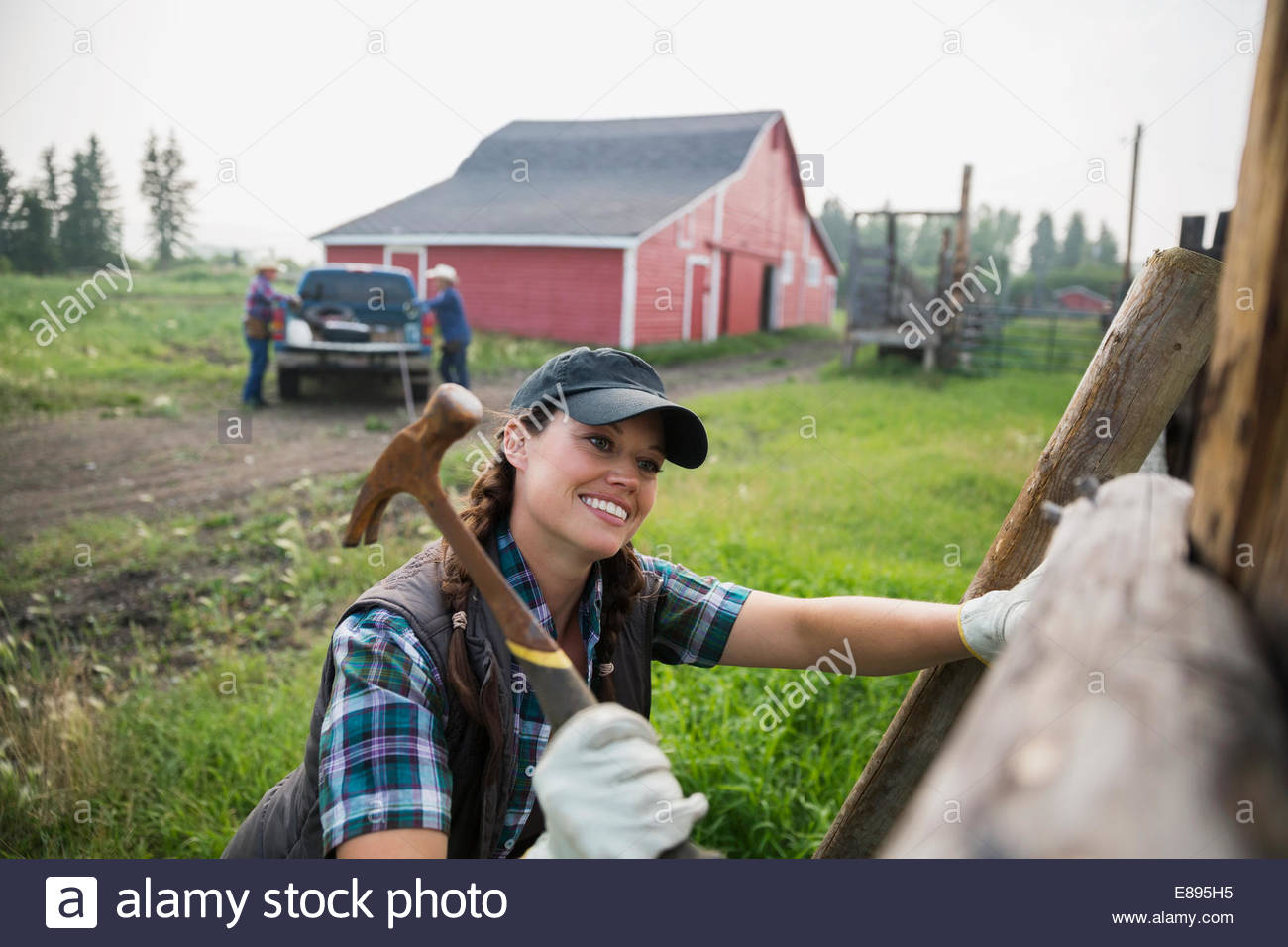 Smiling rancher hammering fence post in pasture - Stock Image