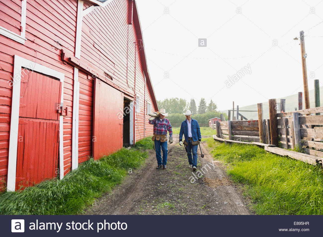 Ranchers carrying fence posts along path outside barn - Stock Image