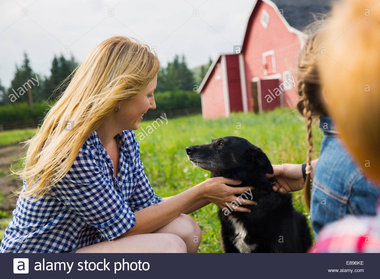 Woman petting dog outside barn - Stock Image