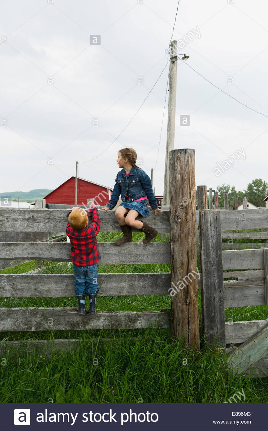 Brother and sister on fence in rural pasture Stock Photo