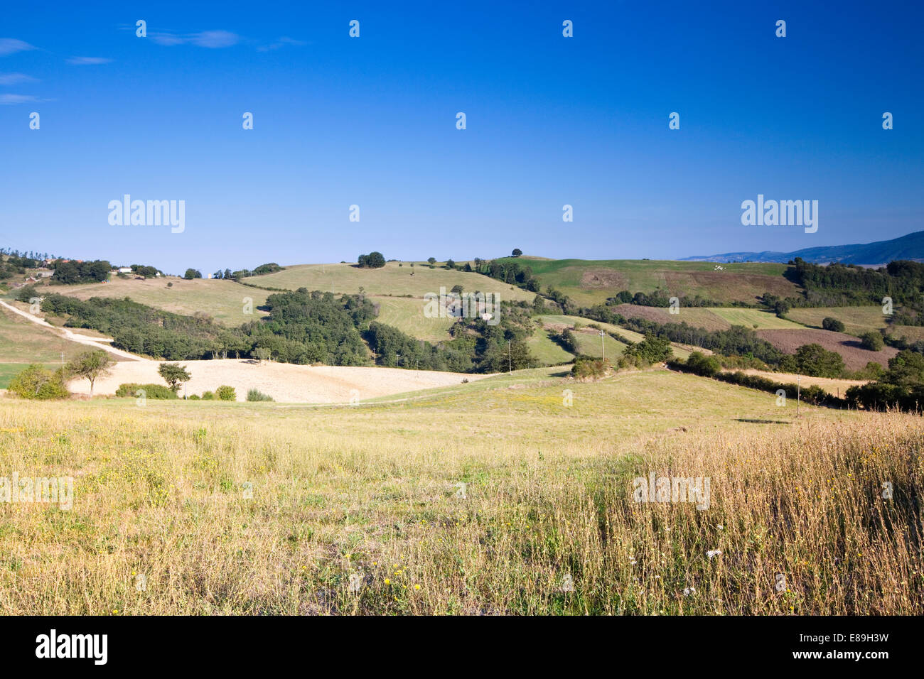Summer hills in Tuscany, near Sarteano - Stock Image