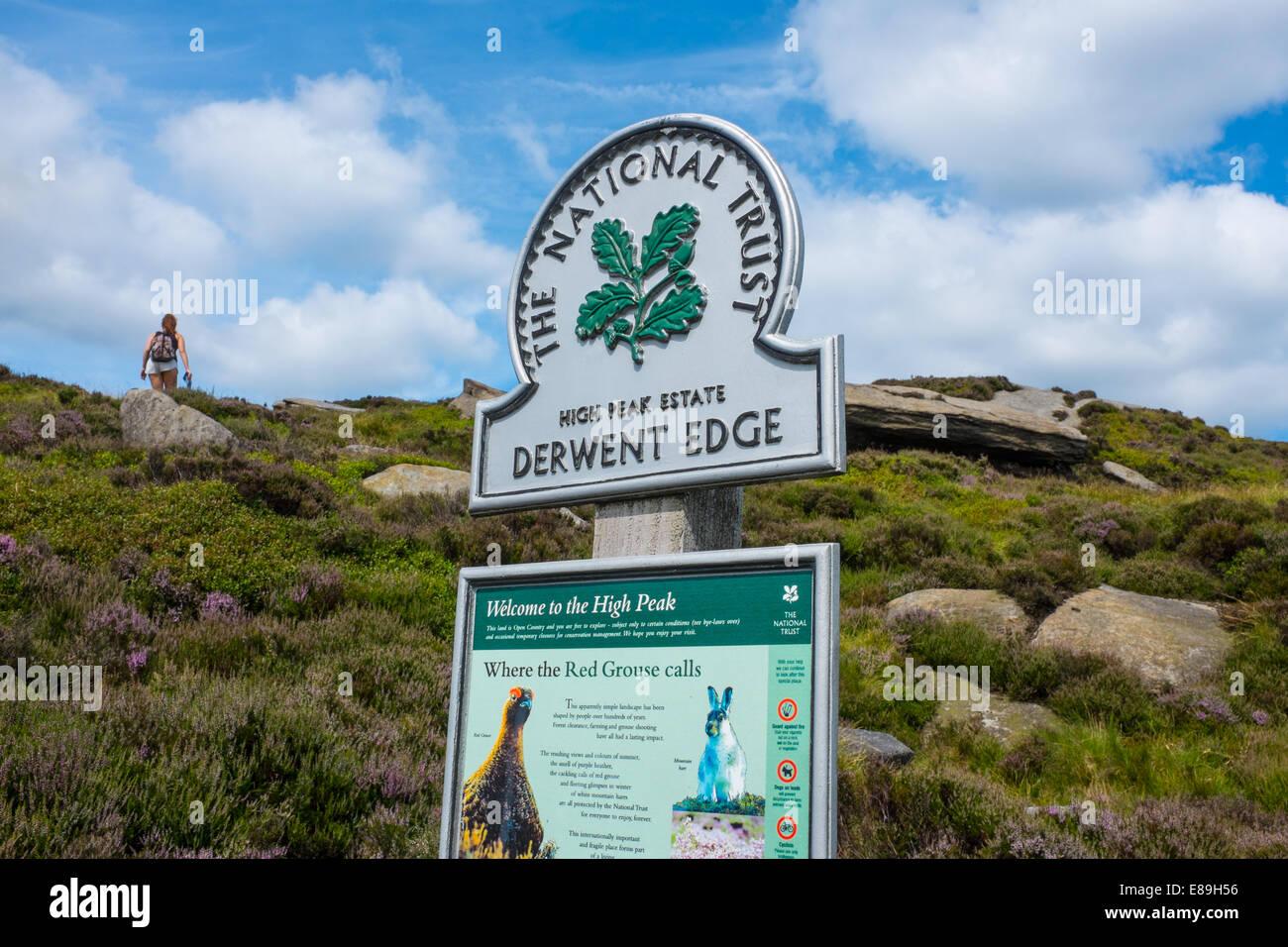 Rambler walking on Derwent Edge - Stock Image