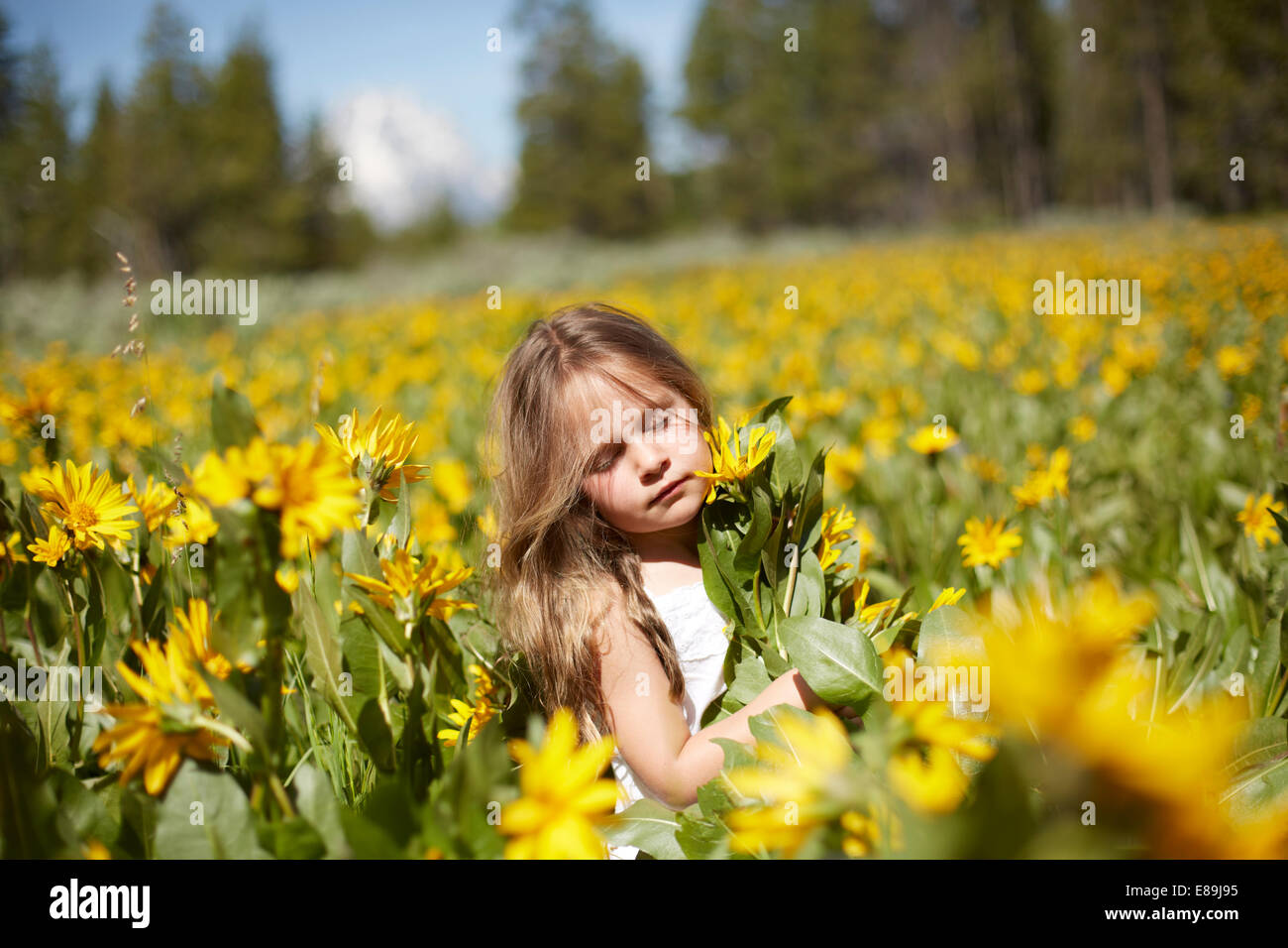 Girl in field of wildflowers - Stock Image