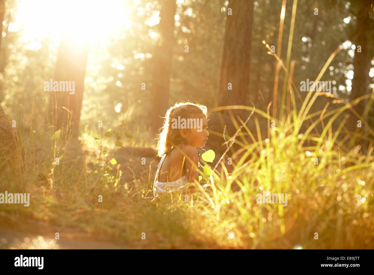 Girl sitting in forest with warm sun - Stock Image