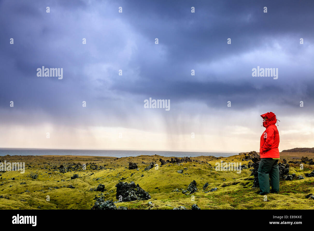 Hiking in lava field in Iceland - Stock Image