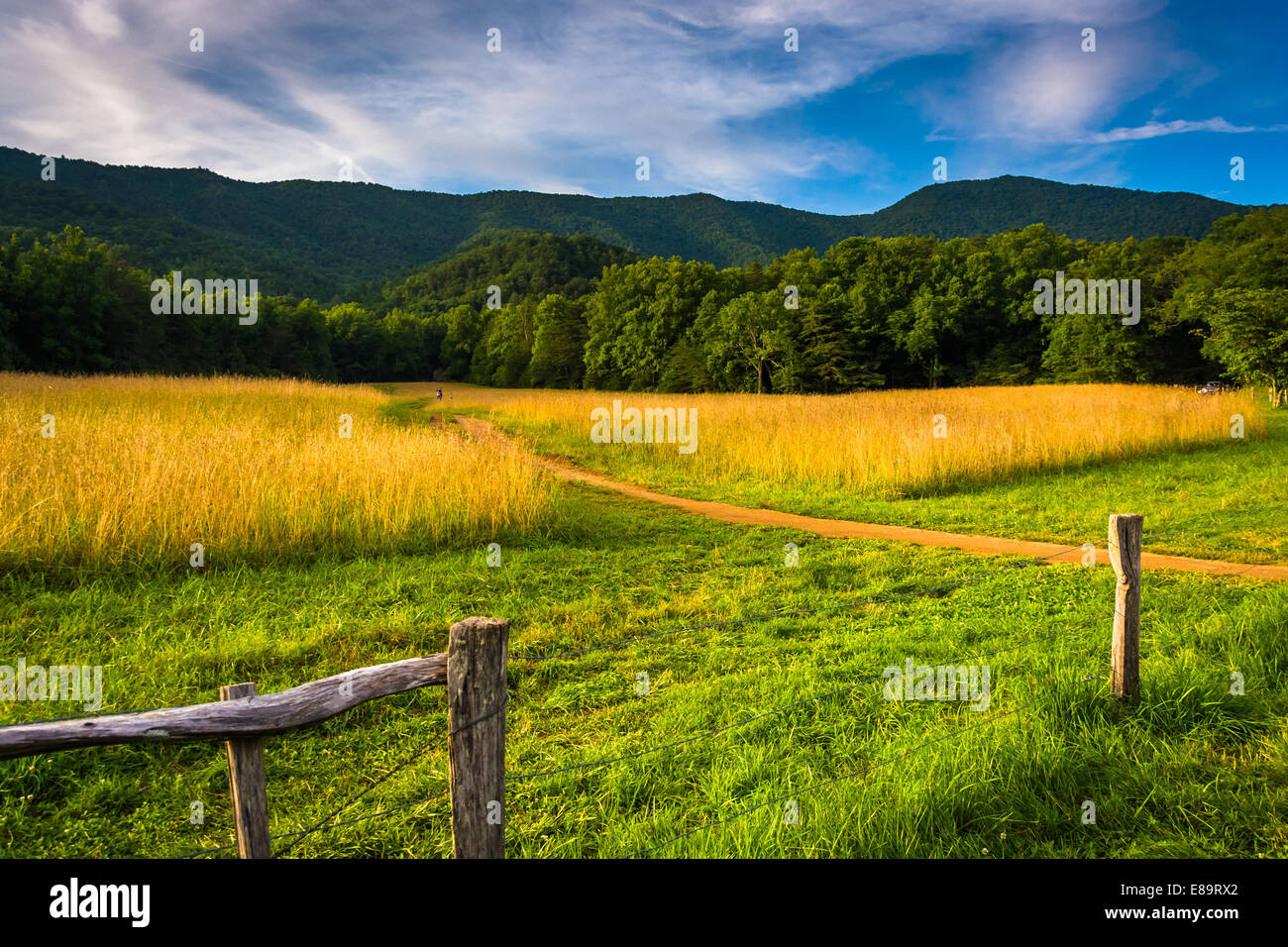 Fence and field at  Cade's Cove, Great Smoky Mountains National Park, Tennessee. - Stock Image