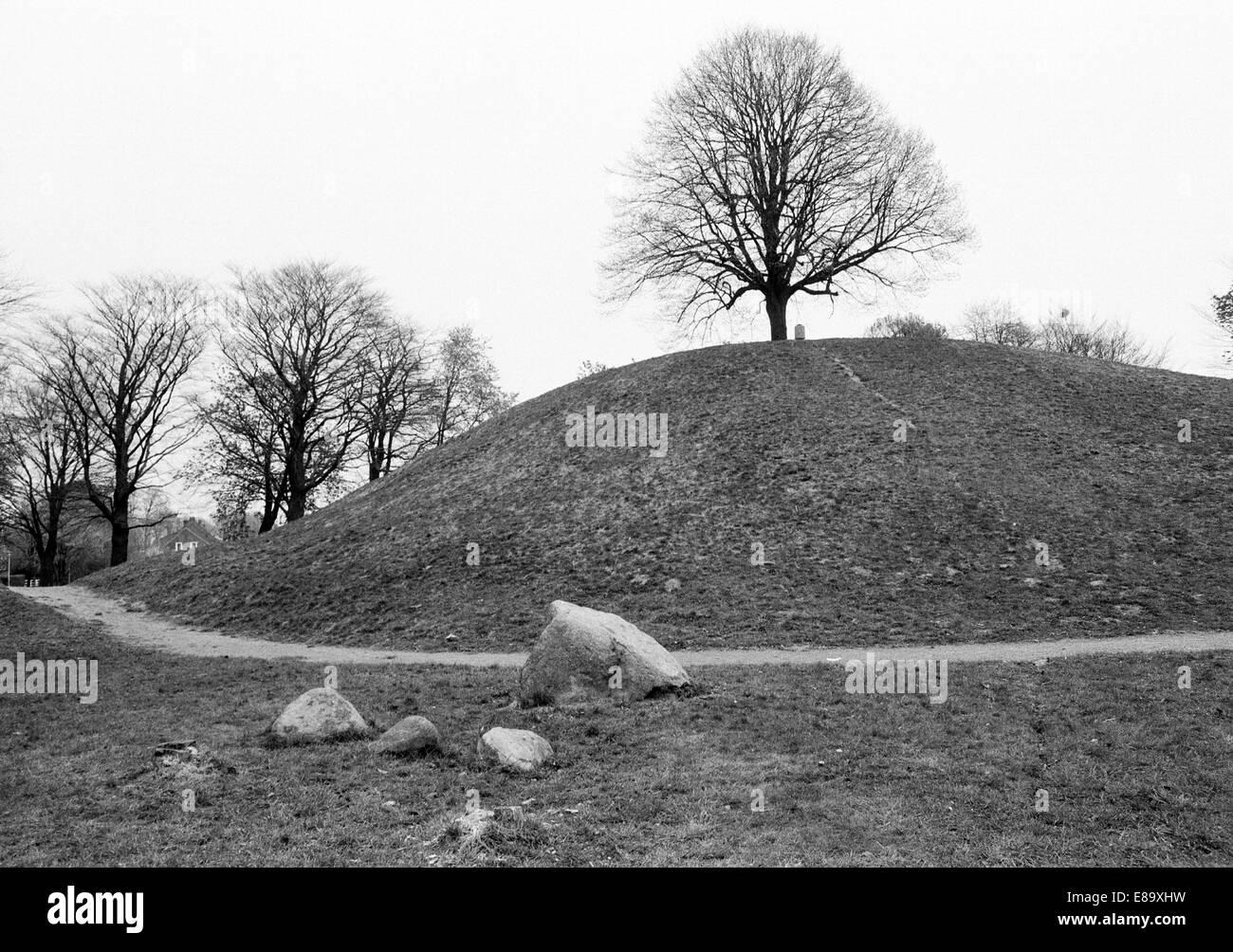 Achtziger Jahre, Plytenberg, Erdhuegel, im Mittelalter Aussichtspunkt fuer die Festung Leerort, Leer, Ostfriesland, - Stock Image