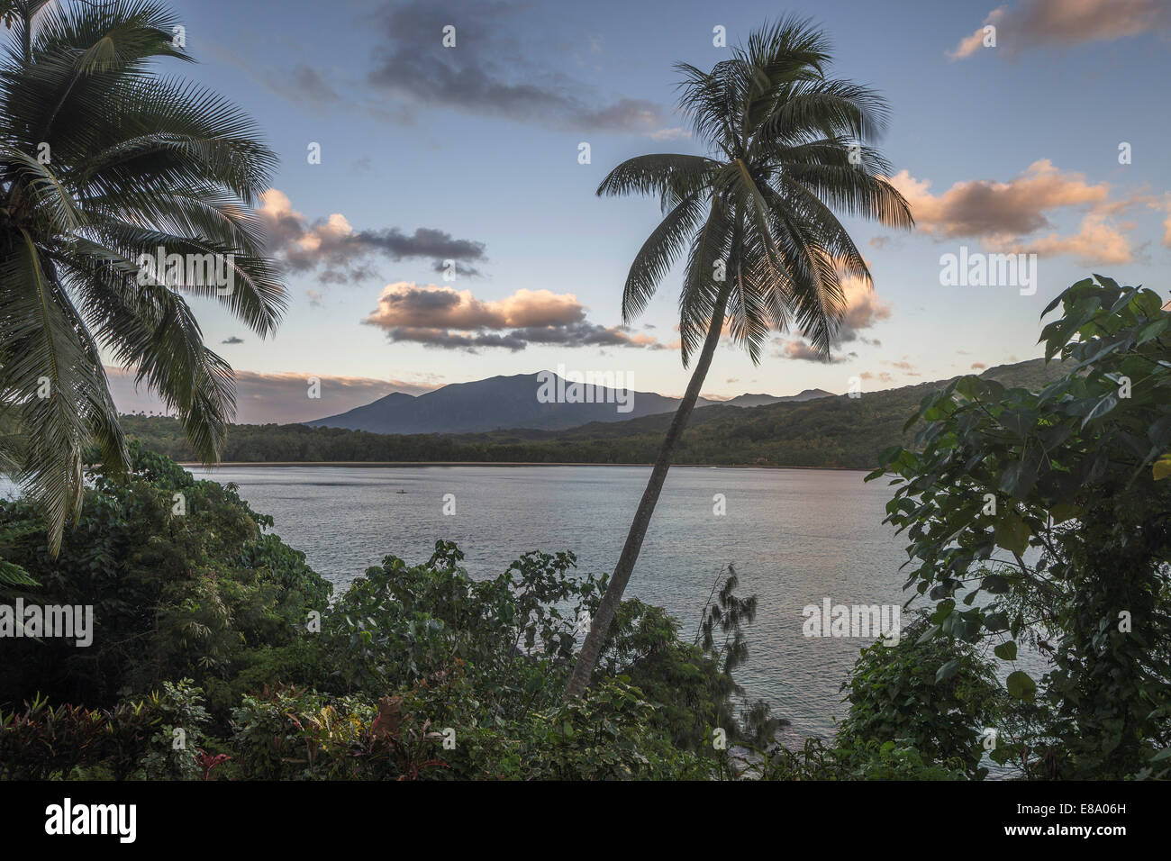Palm trees off Port Resolution Bay, Tanna Island, Vanuatu - Stock Image