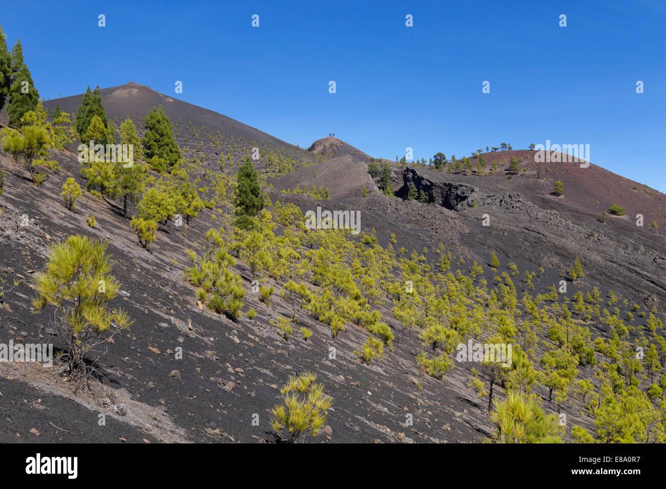 Volcano San Martín, Cumbre Vieja in Fuencaliente, La Palma, Canary Islands, Spain - Stock Image