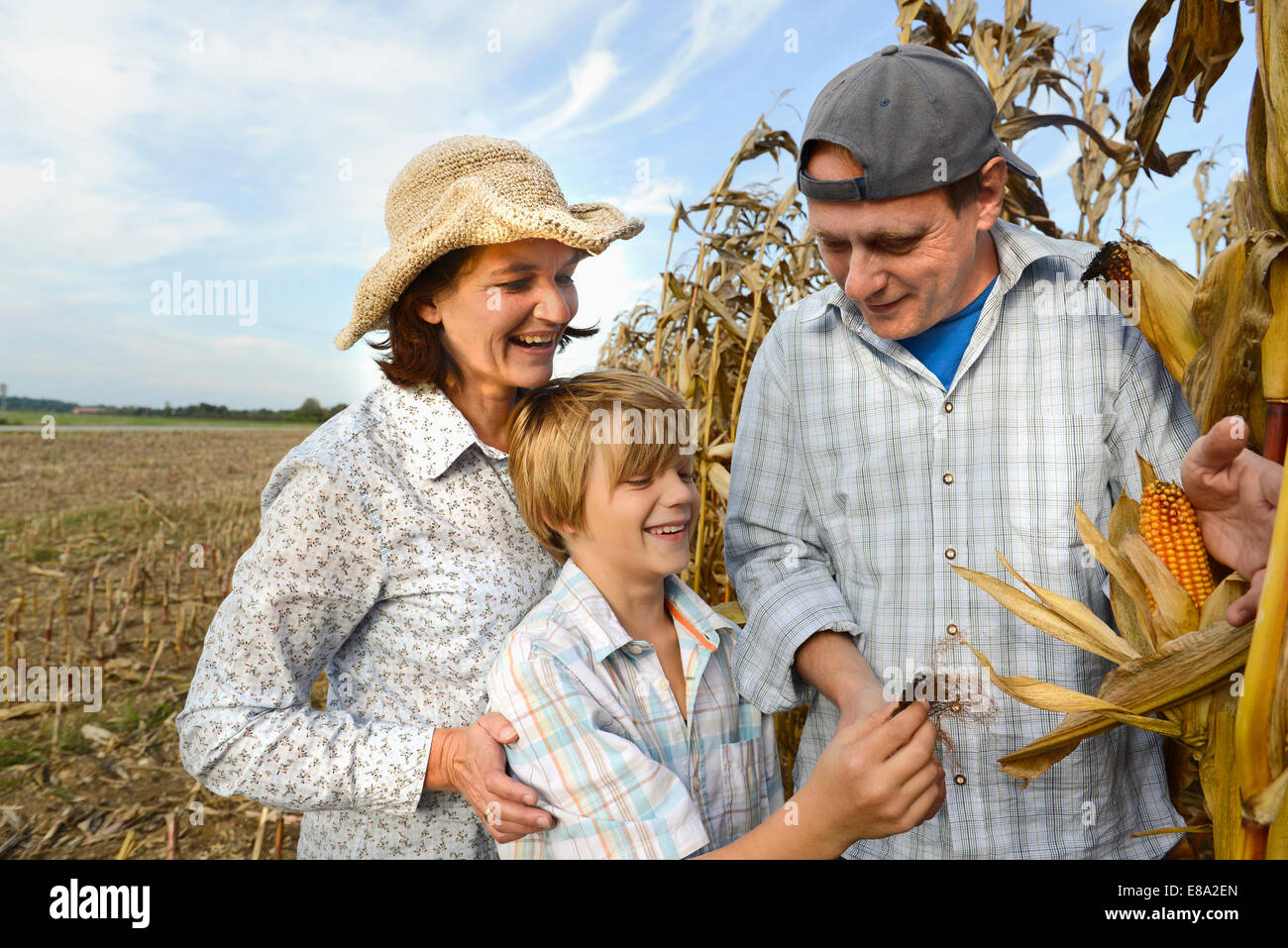 Farmer parents showing ripe corn to their son, Bavaria, Germany - Stock Image