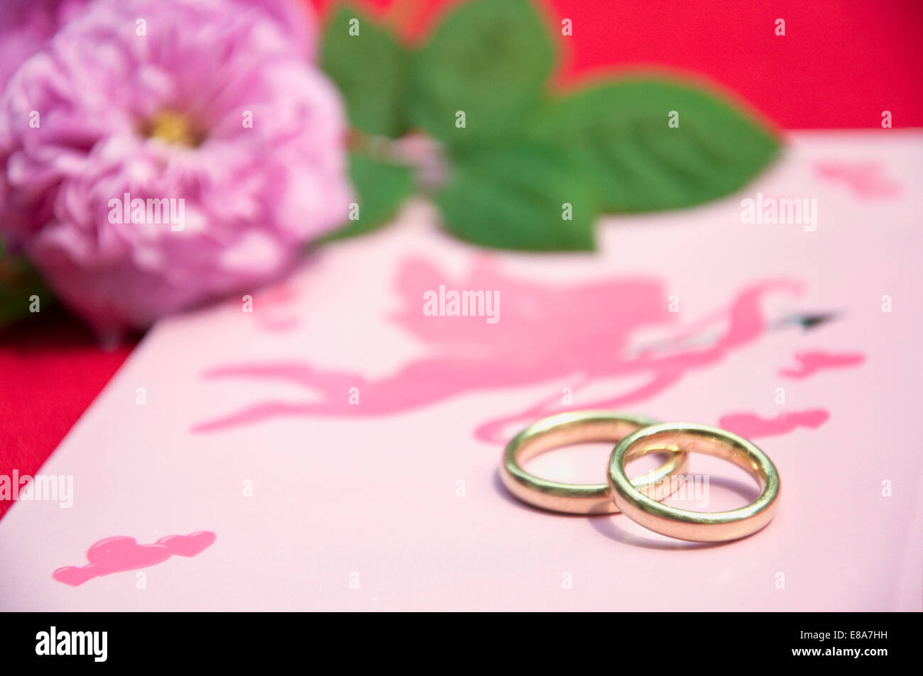 Wedding rings on wedding card with roses, close up Stock Photo ...