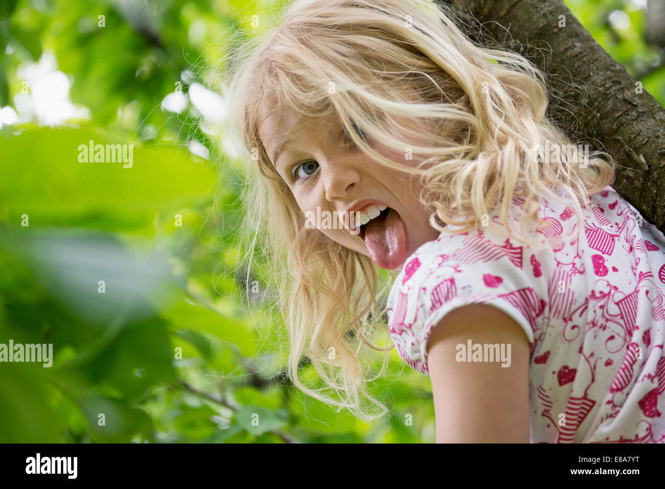 Young girl sitting in tree sticking tongue out - Stock Image