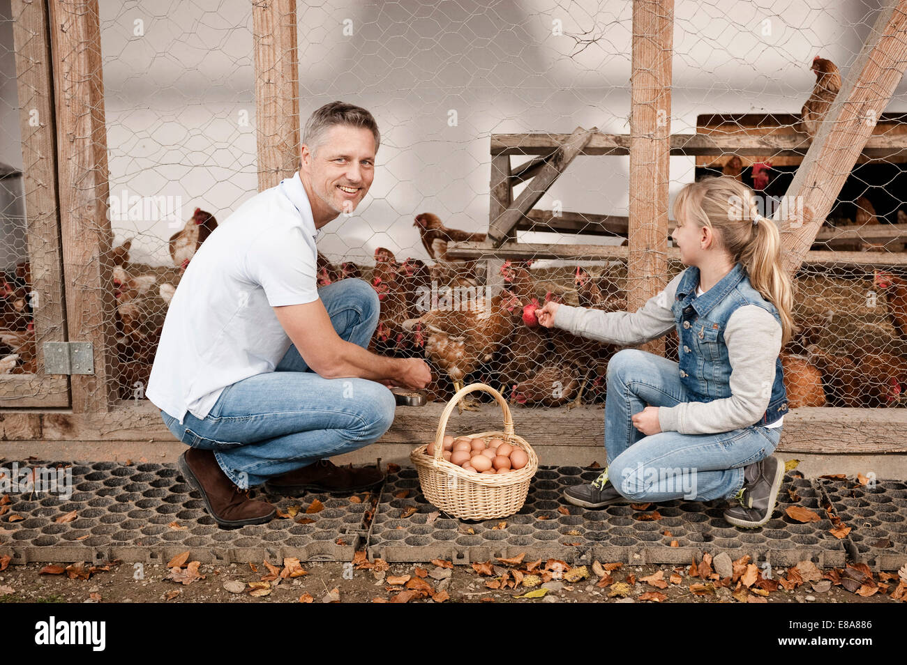 Father and daughter at henhouse on organic farm Stock Photo