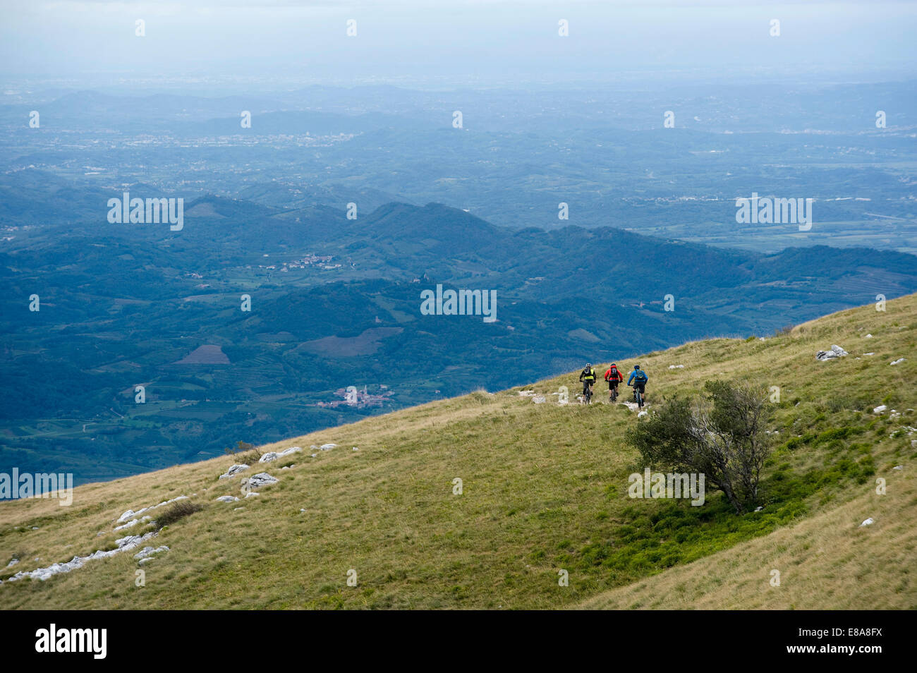 three mountain bikers on the way downhill, Vipava valley, Istria, Nanos, Slovenia - Stock Image