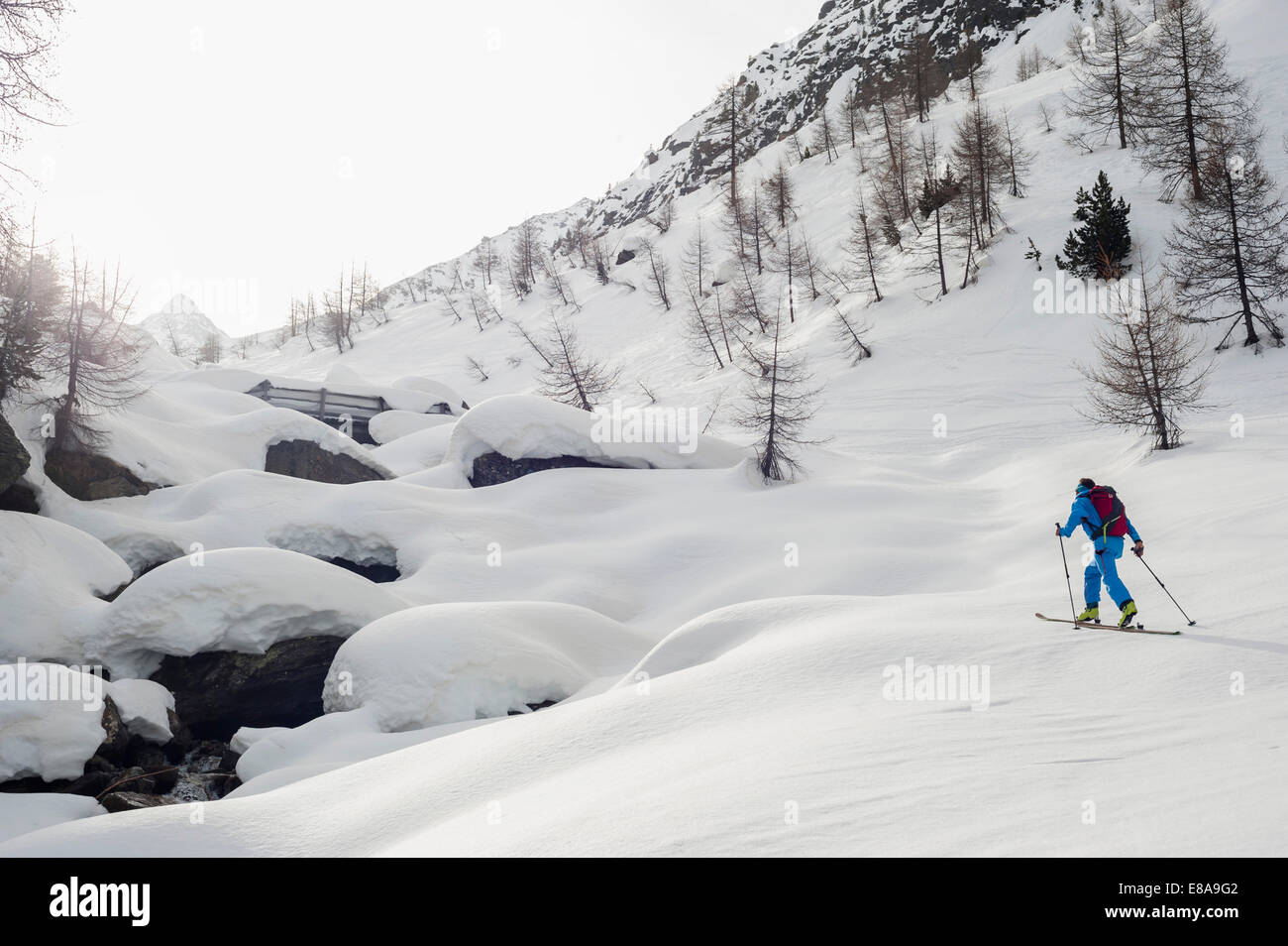 Winter landscape man skiing cross-country - Stock Image