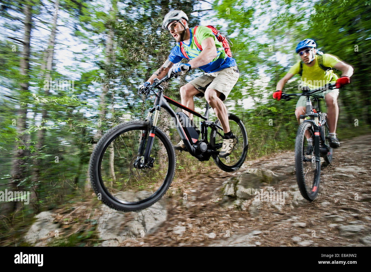 Two Mountainbikers stunt racing forest track - Stock Image