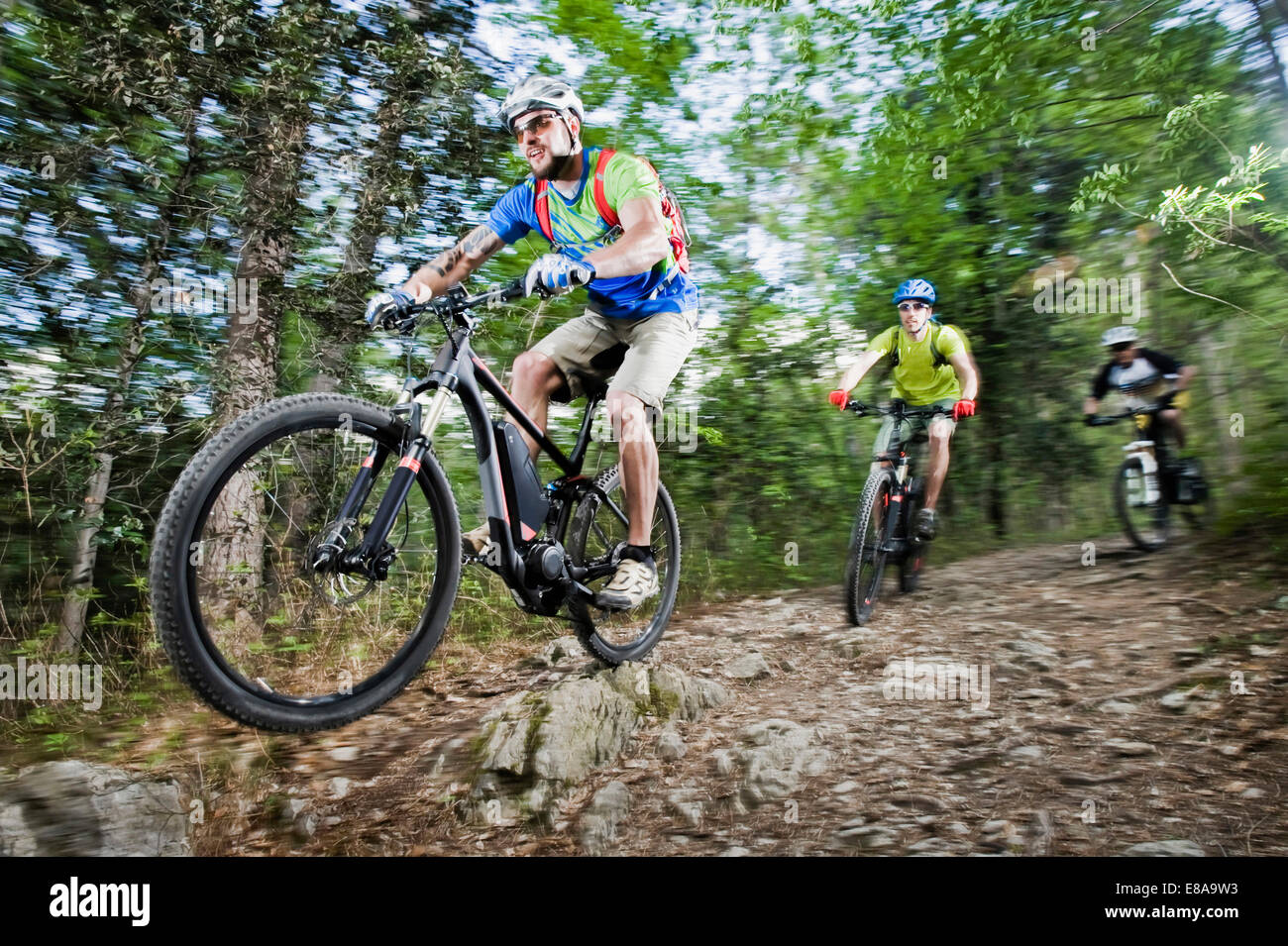 Three Mountainbikers stunt racing forest track - Stock Image