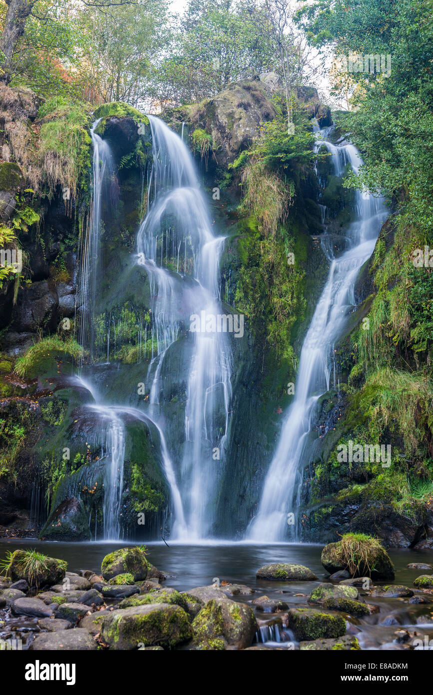 Posforth Gill Waterfall in the Valley of Desolation, Whafedale Yorkshire Dales, UK - Stock Image