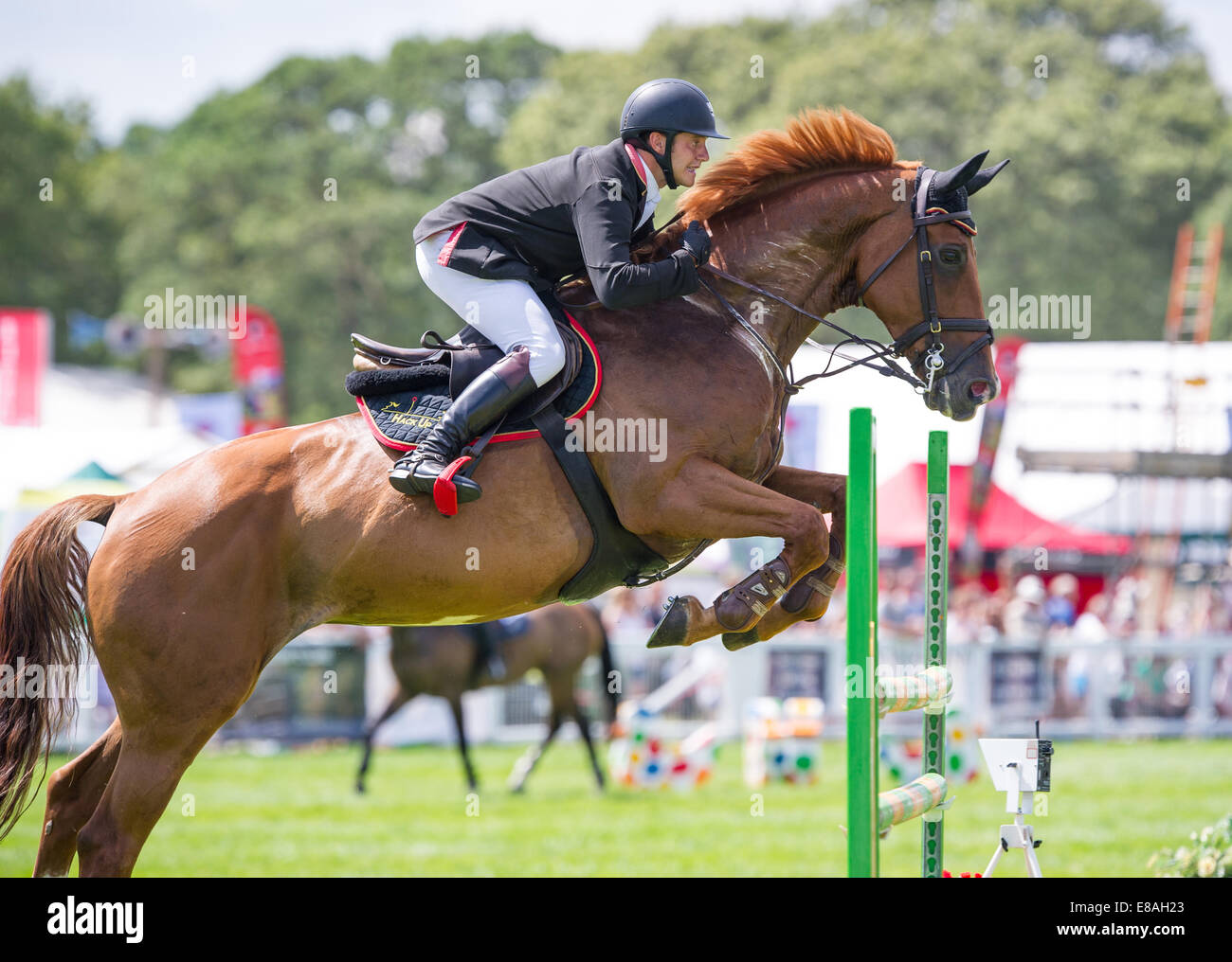 Horse show jumping at the new forest show Hampshire england - Stock Image