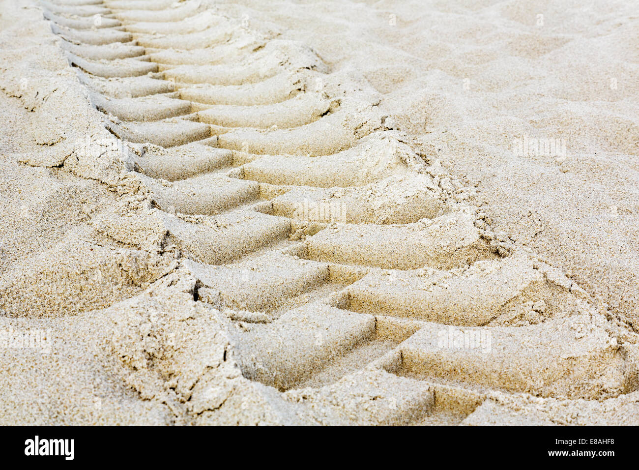 Tractor tires footprint - Stock Image