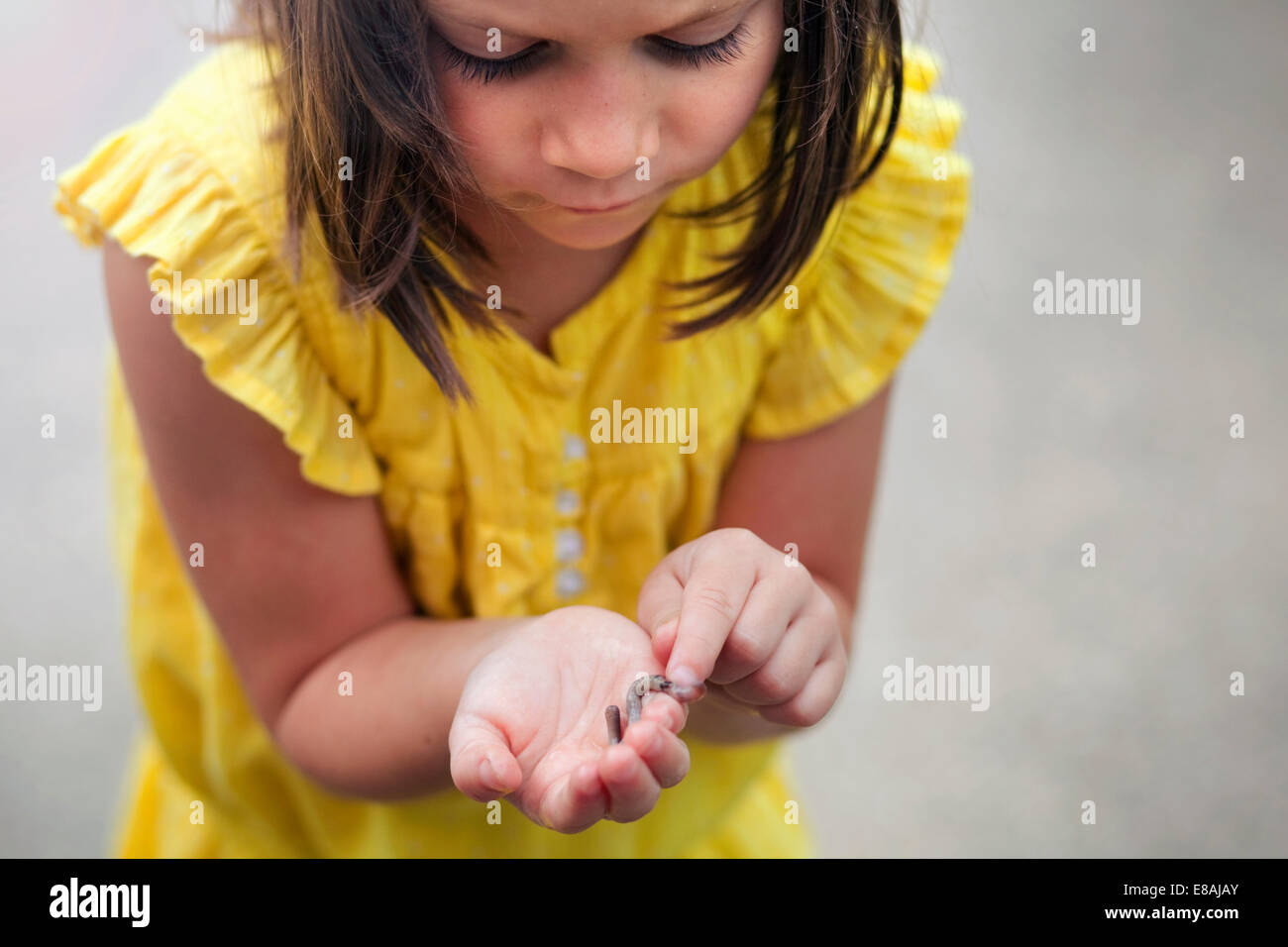 Girl holding and looking down at worm - Stock Image