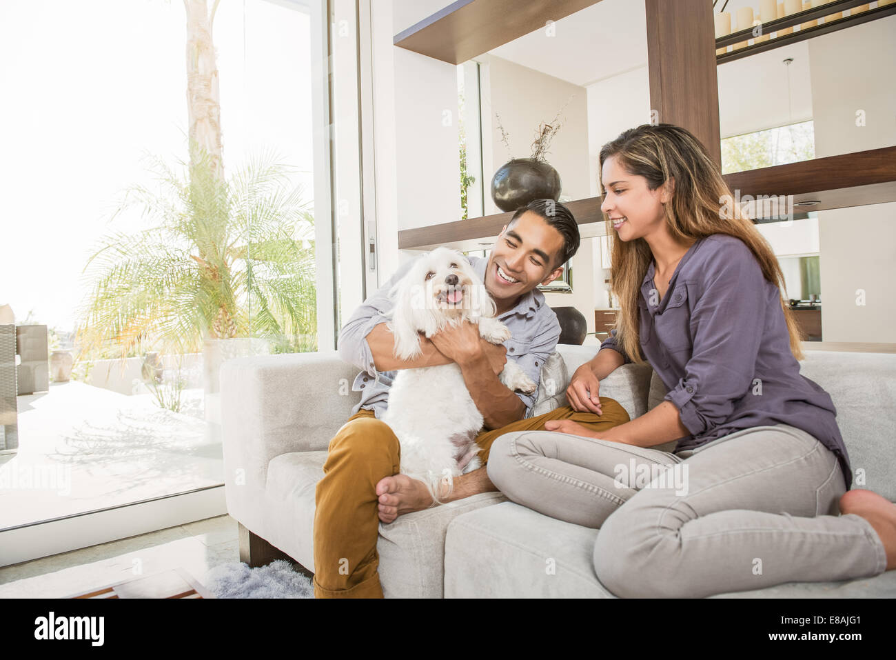 Couple petting cute dog on sitting room sofa - Stock Image