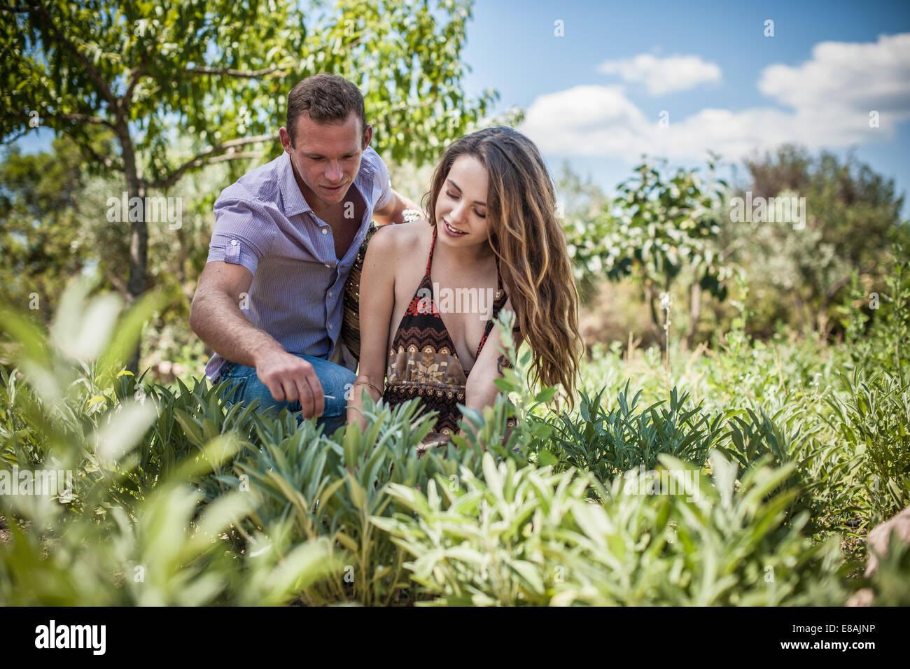 Young couple tending herbs, Castiadas, Sardinia, Italy - Stock Image