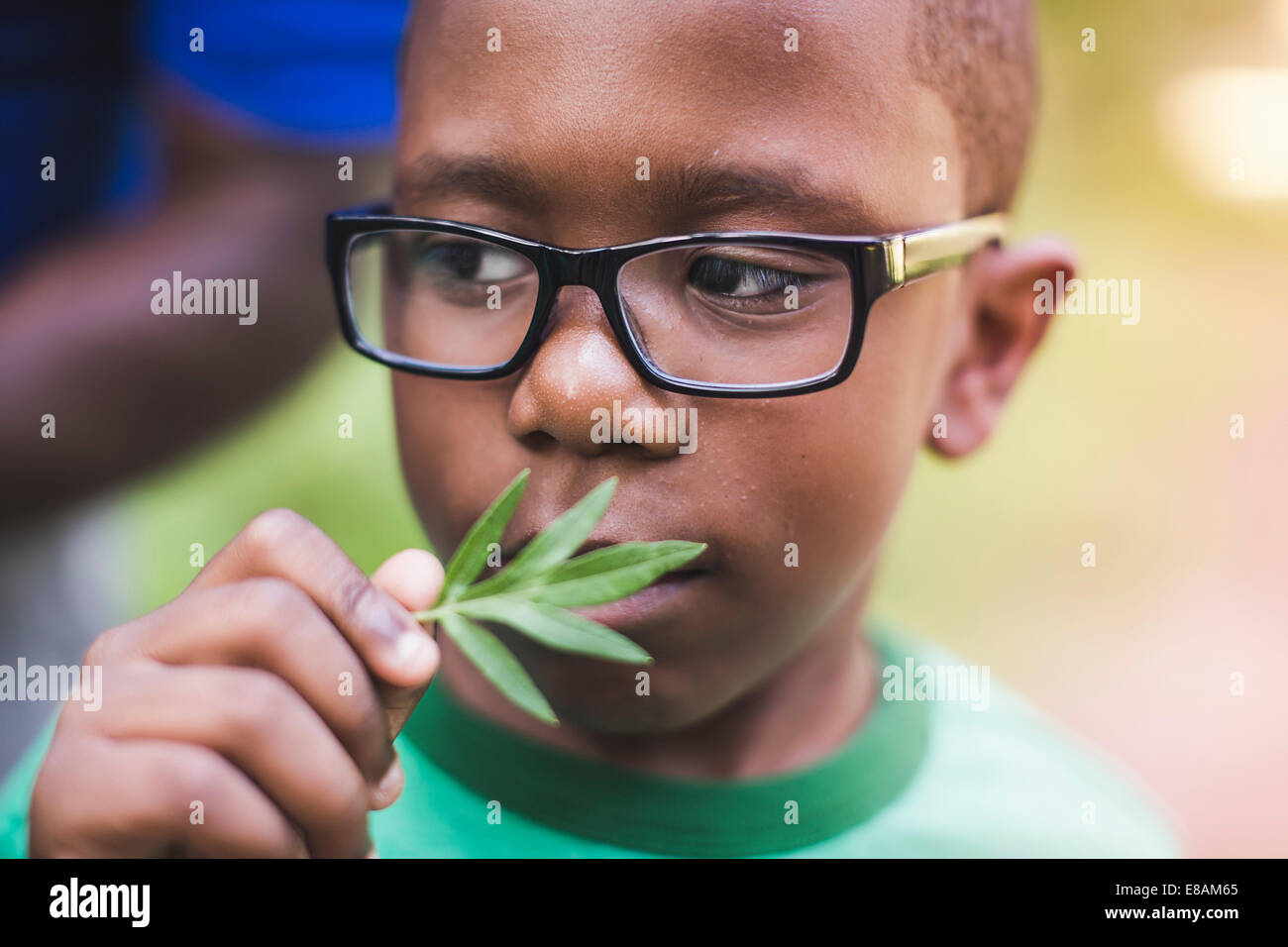 Boy smelling plant in parkland eco camp - Stock Image