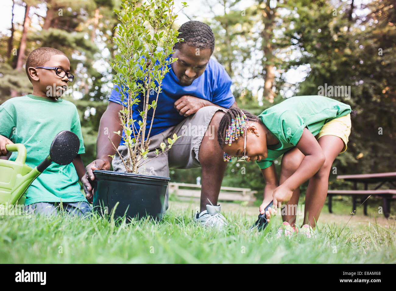Father tending plants with son and daughter at eco camp - Stock Image