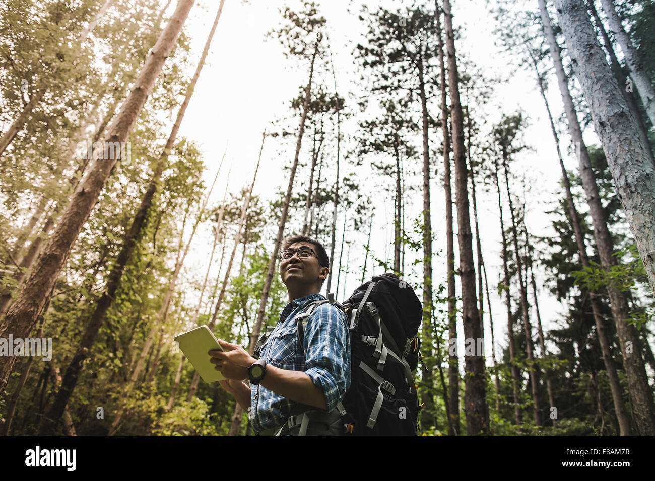 Hiker in forest using digital tablet Stock Photo
