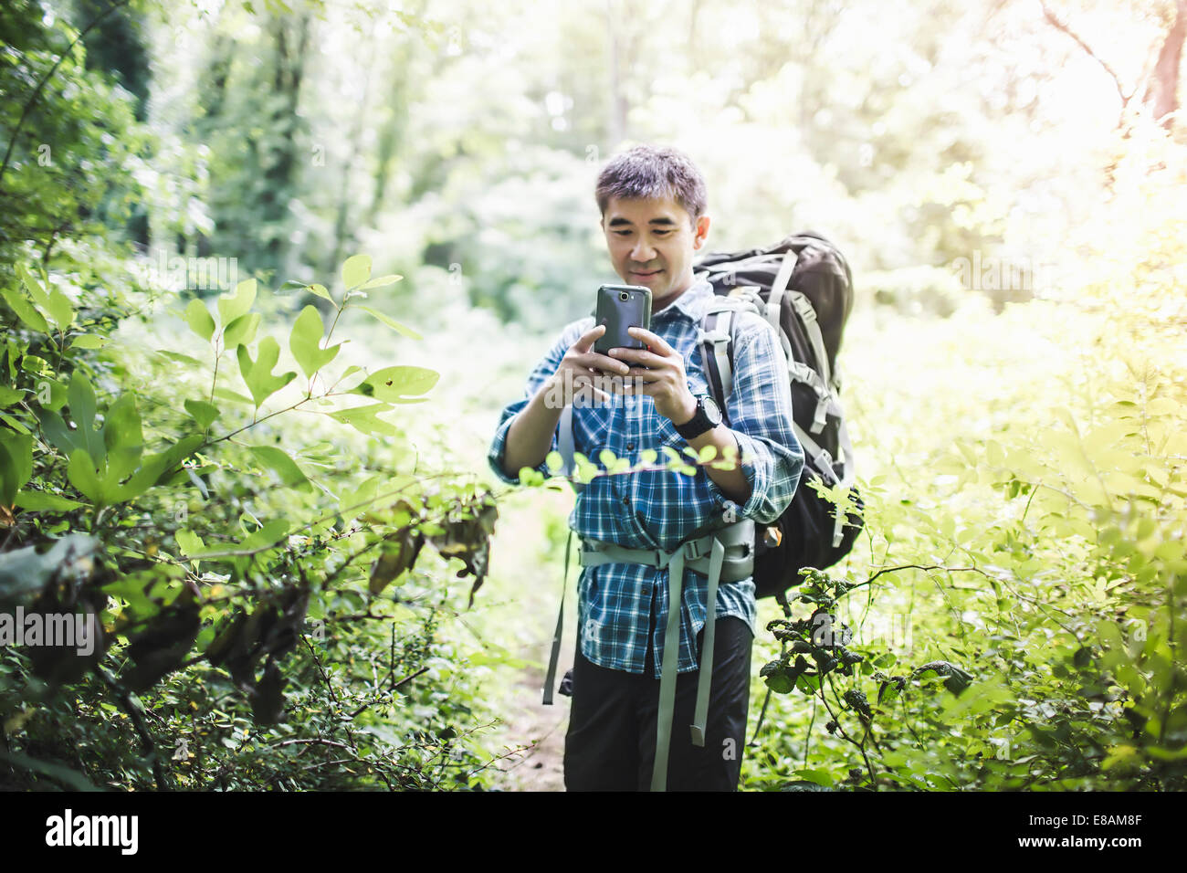 Hiker taking photo with camera phone in forest - Stock Image