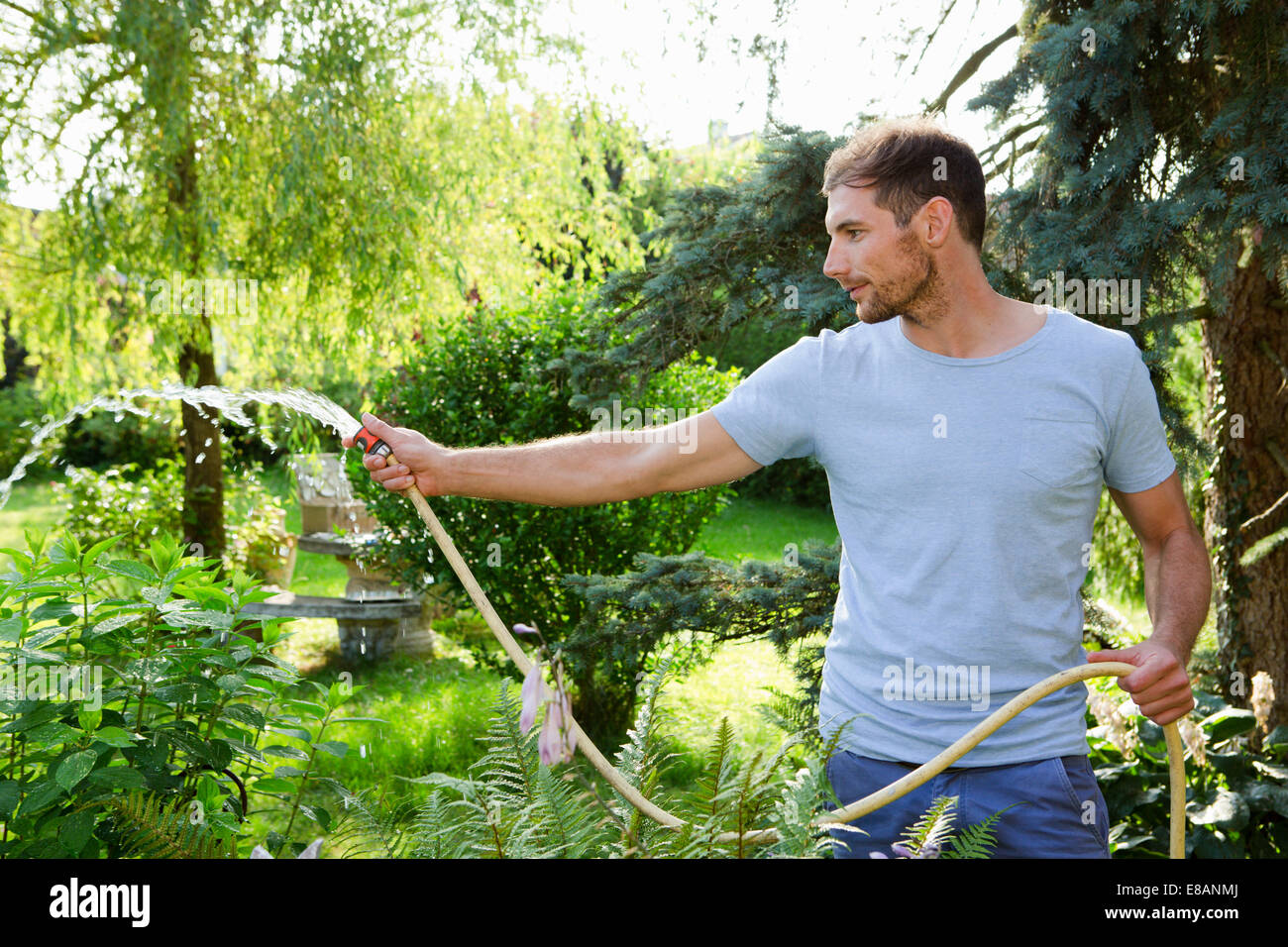 Mid adult man watering garden with hosepipe - Stock Image