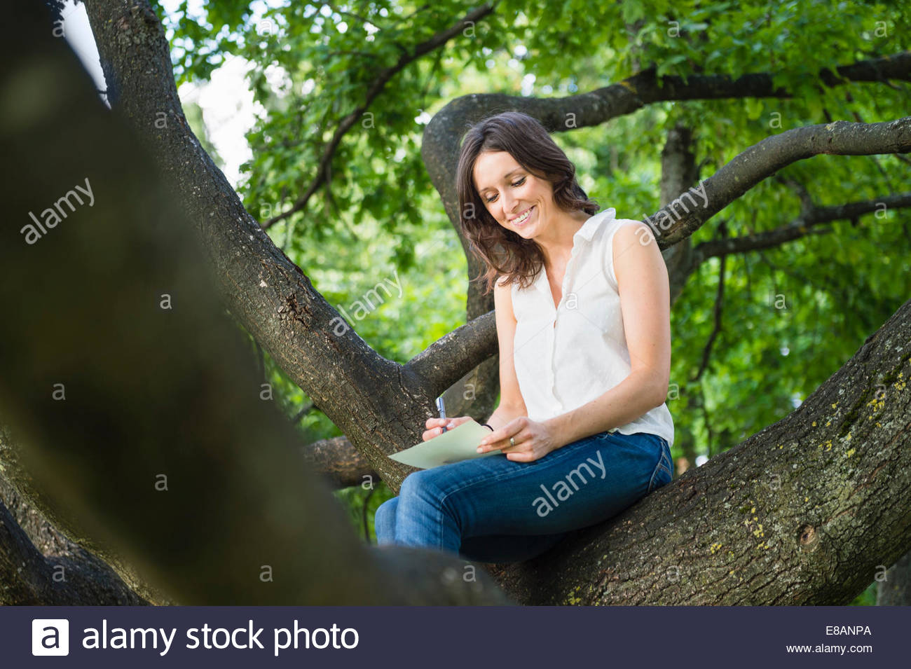 Mid adult woman sitting in woodland tree writing - Stock Image