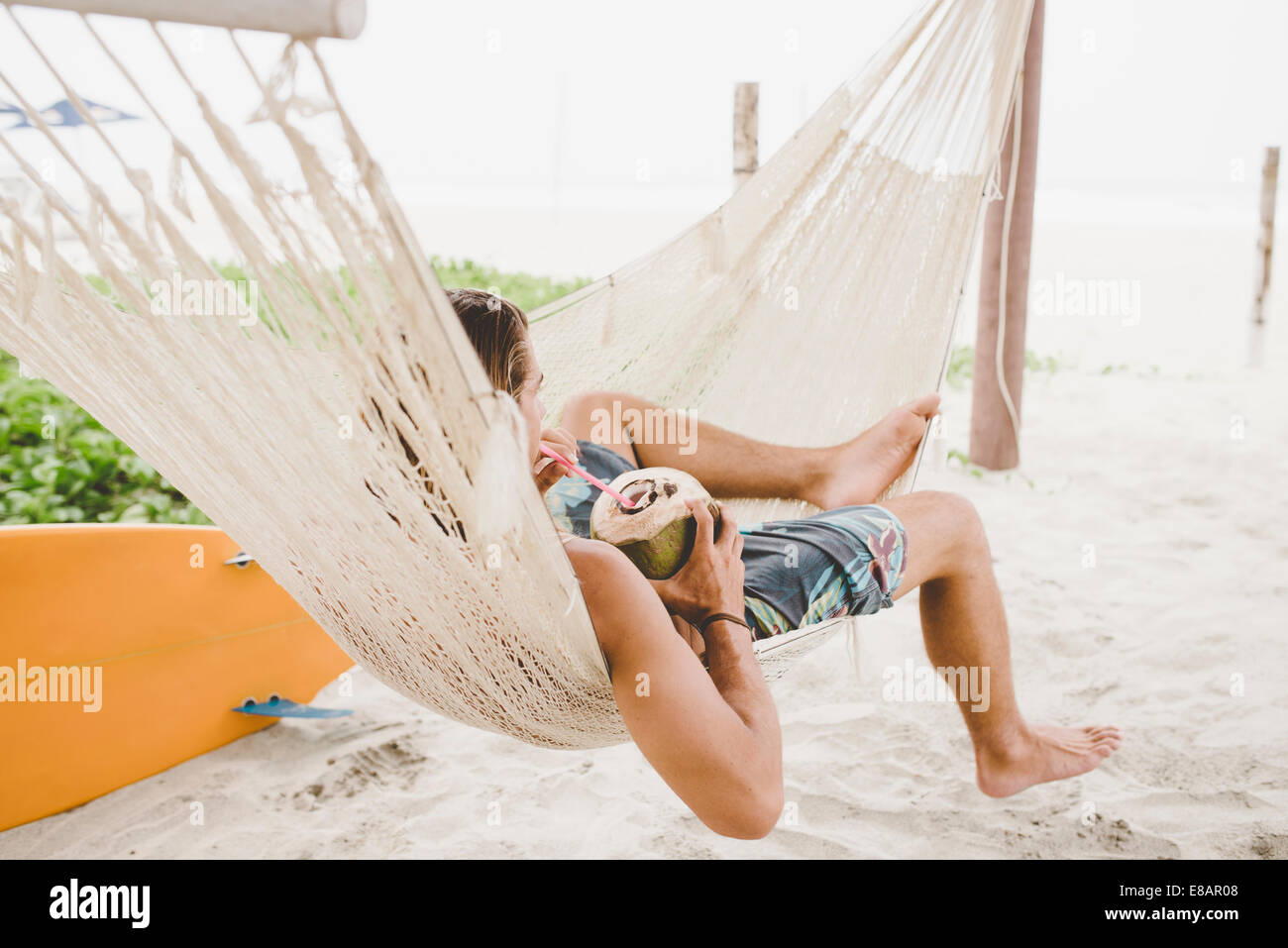 Man enjoying coconut water in hammock on beach - Stock Image