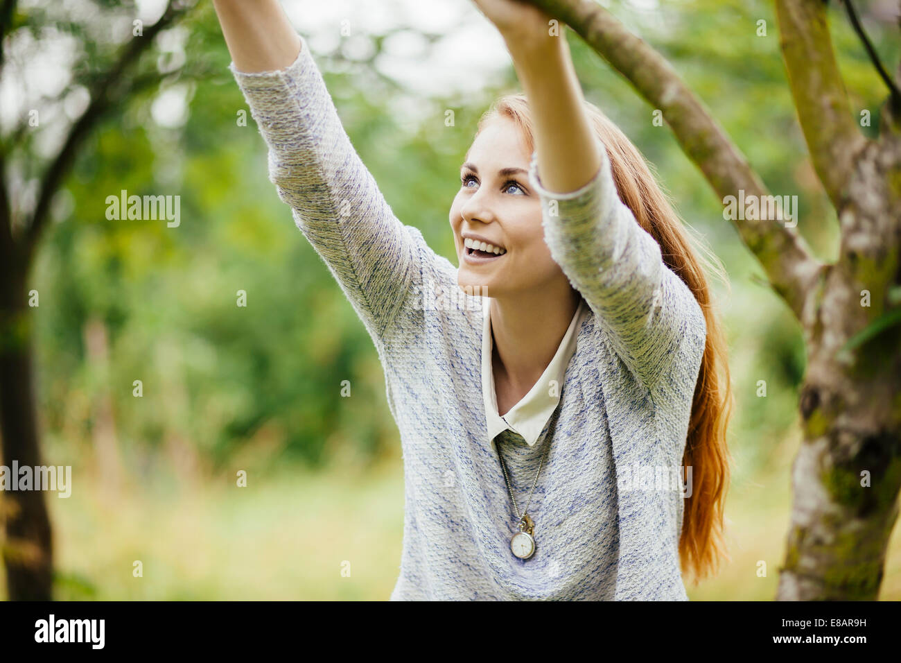 Young woman in field holding on to tree branch - Stock Image