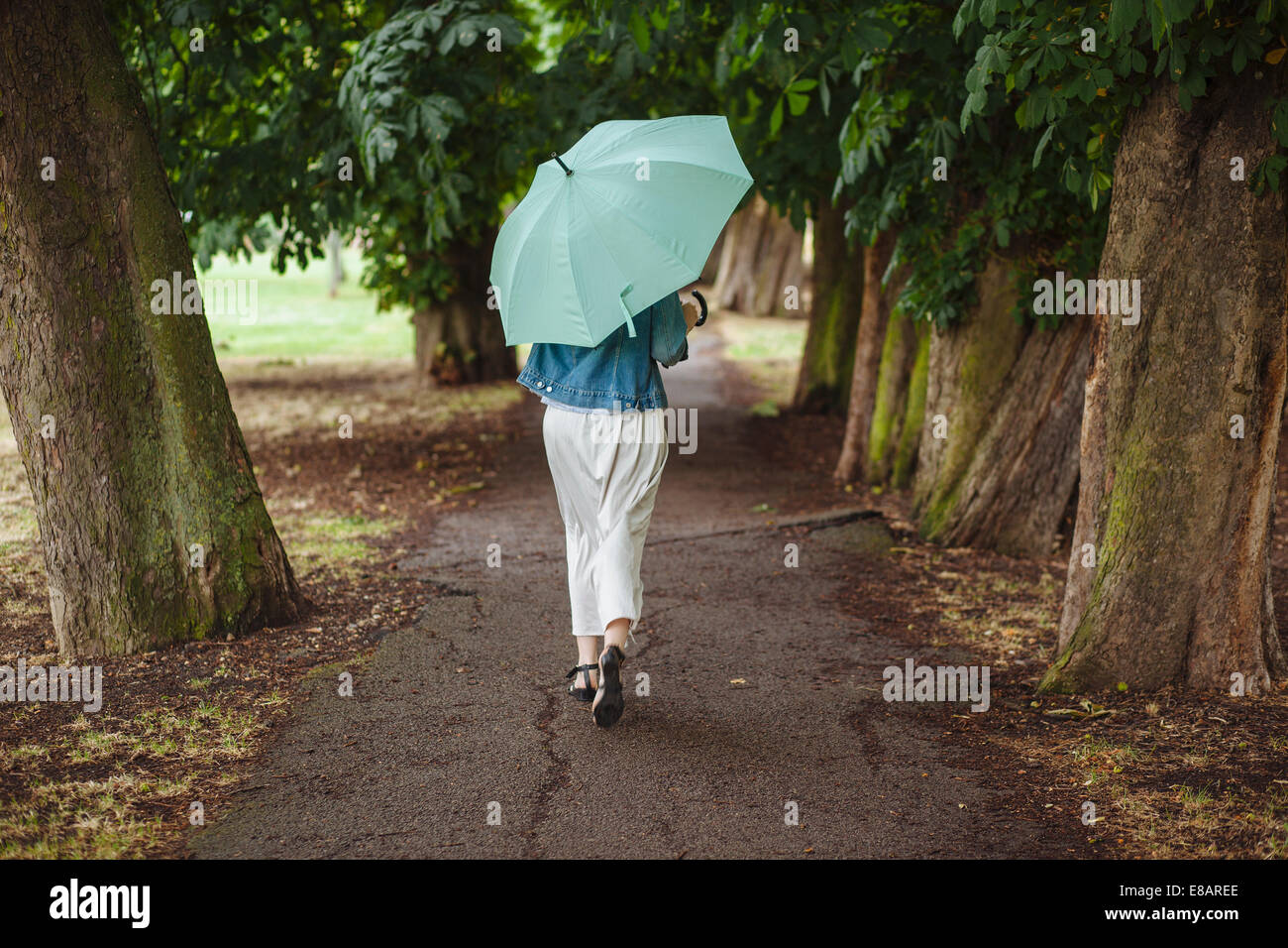 Rear view of young woman with umbrella strolling in park - Stock Image