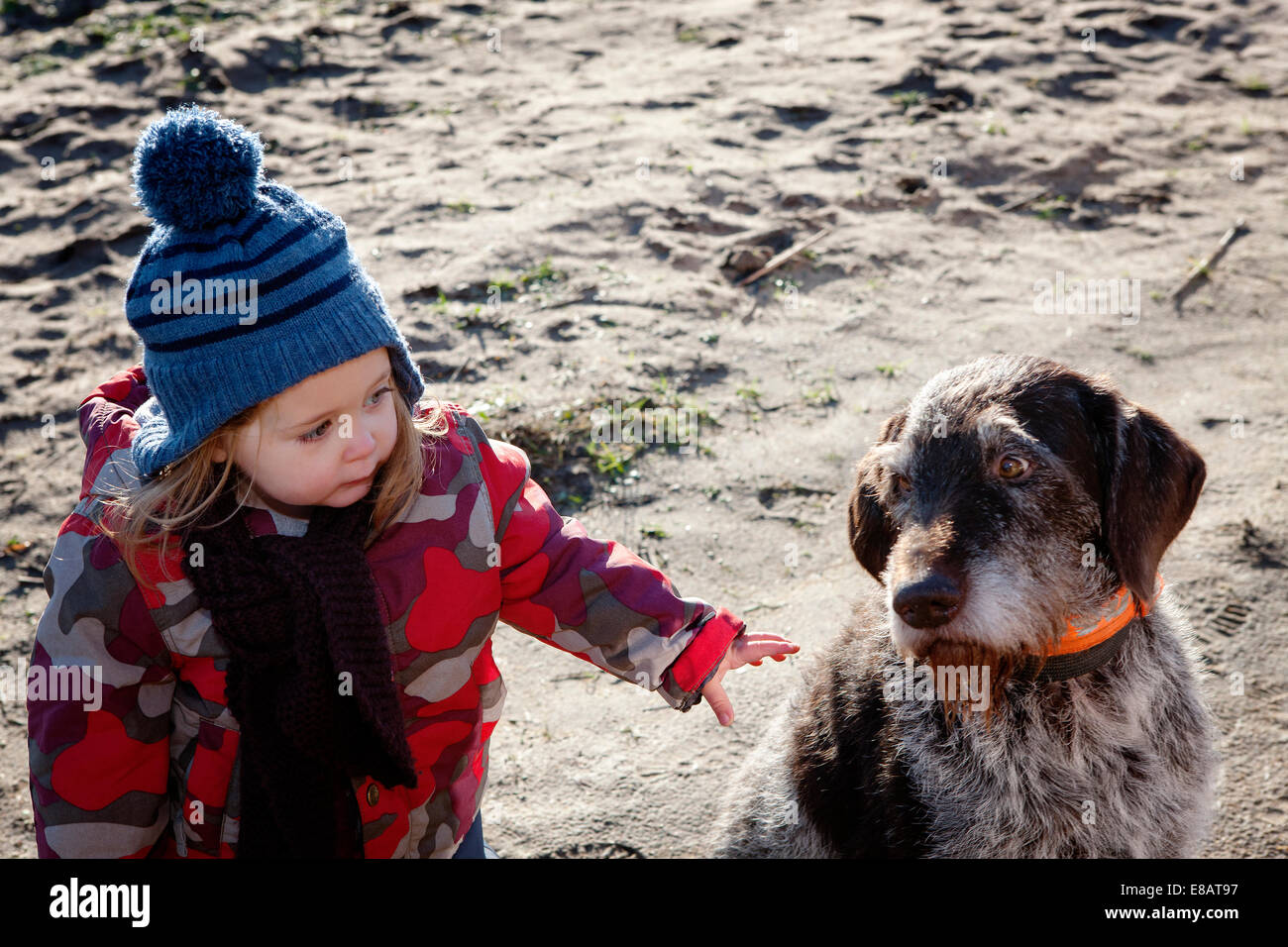 Young girl stroking dog - Stock Image