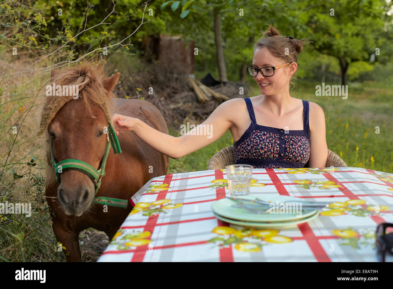 Young woman at table petting pony, Sierra Nevada, Andalucia Granada, Spain - Stock Image