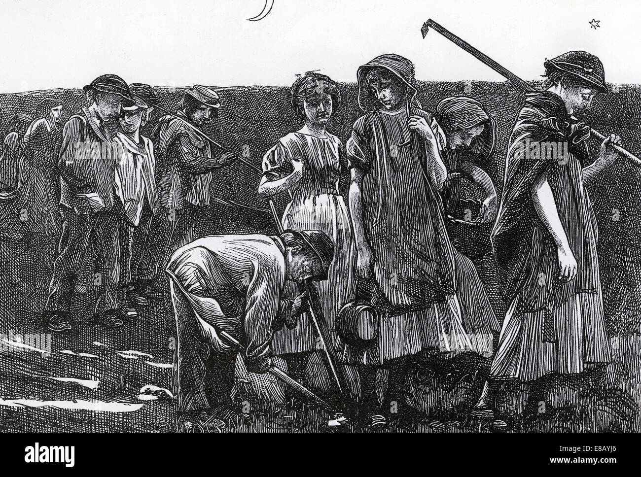 THE GANG CHILDREN Victorian children as farm labourers in a wood engraving by the Dalziel Brothers in 1868 - Stock Image