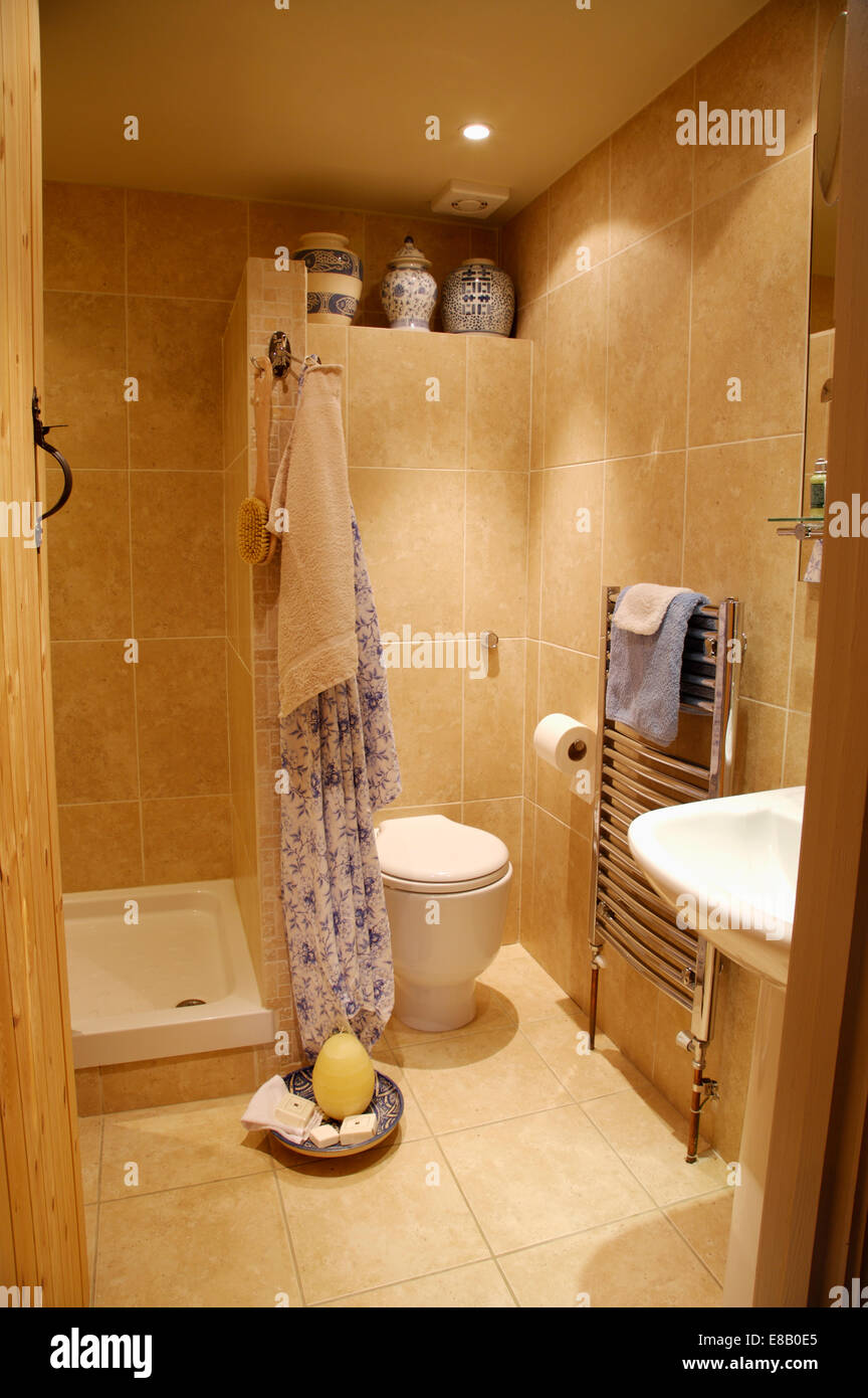 Open shower area divided by tiled wall from toilet area in modern ...