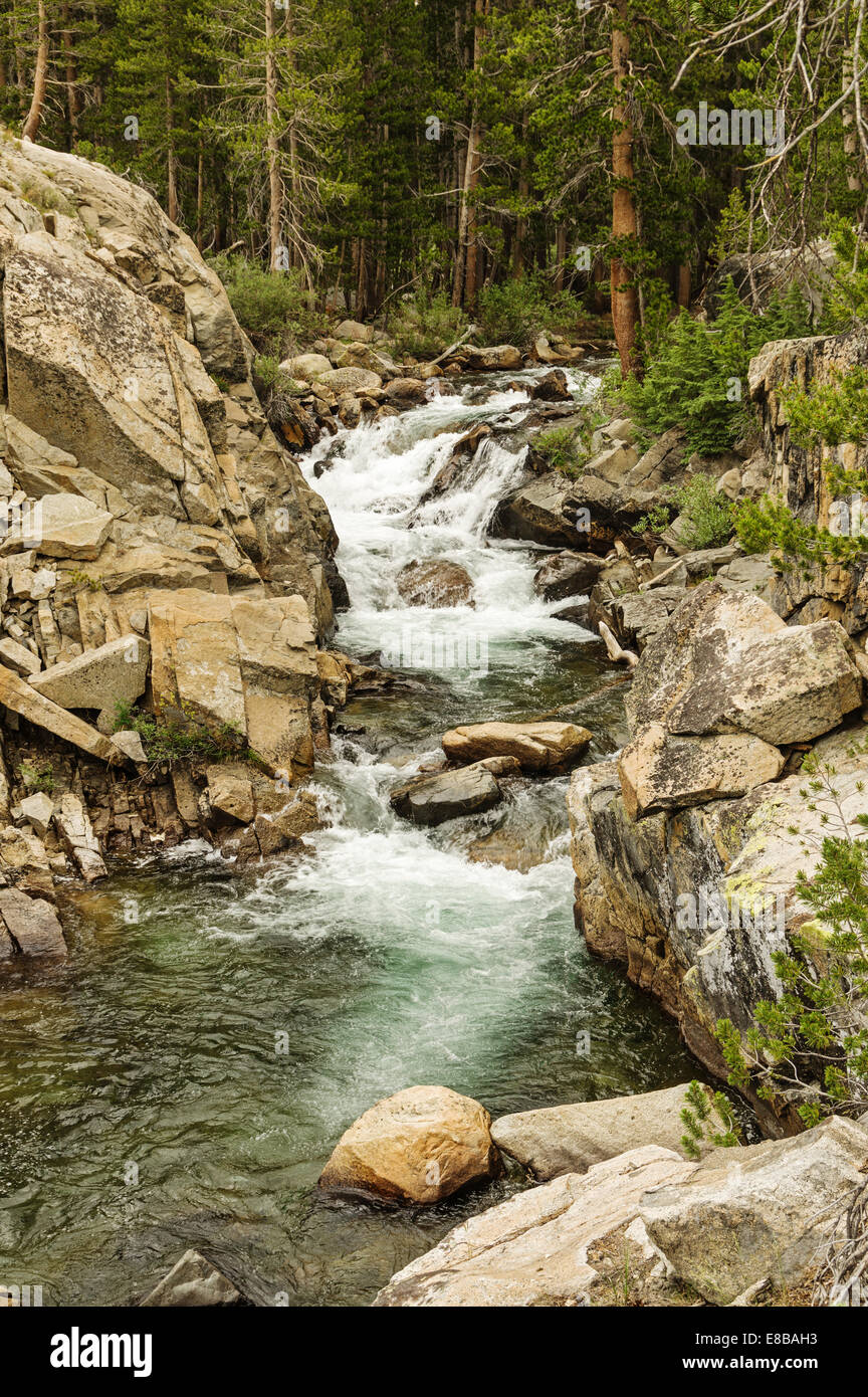 waterfall rapids on Evolution Creek in Kings Canyon National Park - Stock Image